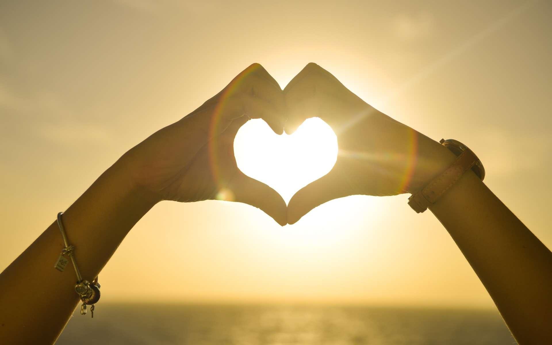 L'ocytocine, qualifiée d'hormone de l'amour, a les mêmes effets psychologiques que l'alcool, les risques pour la santé en moins. © Domaine public