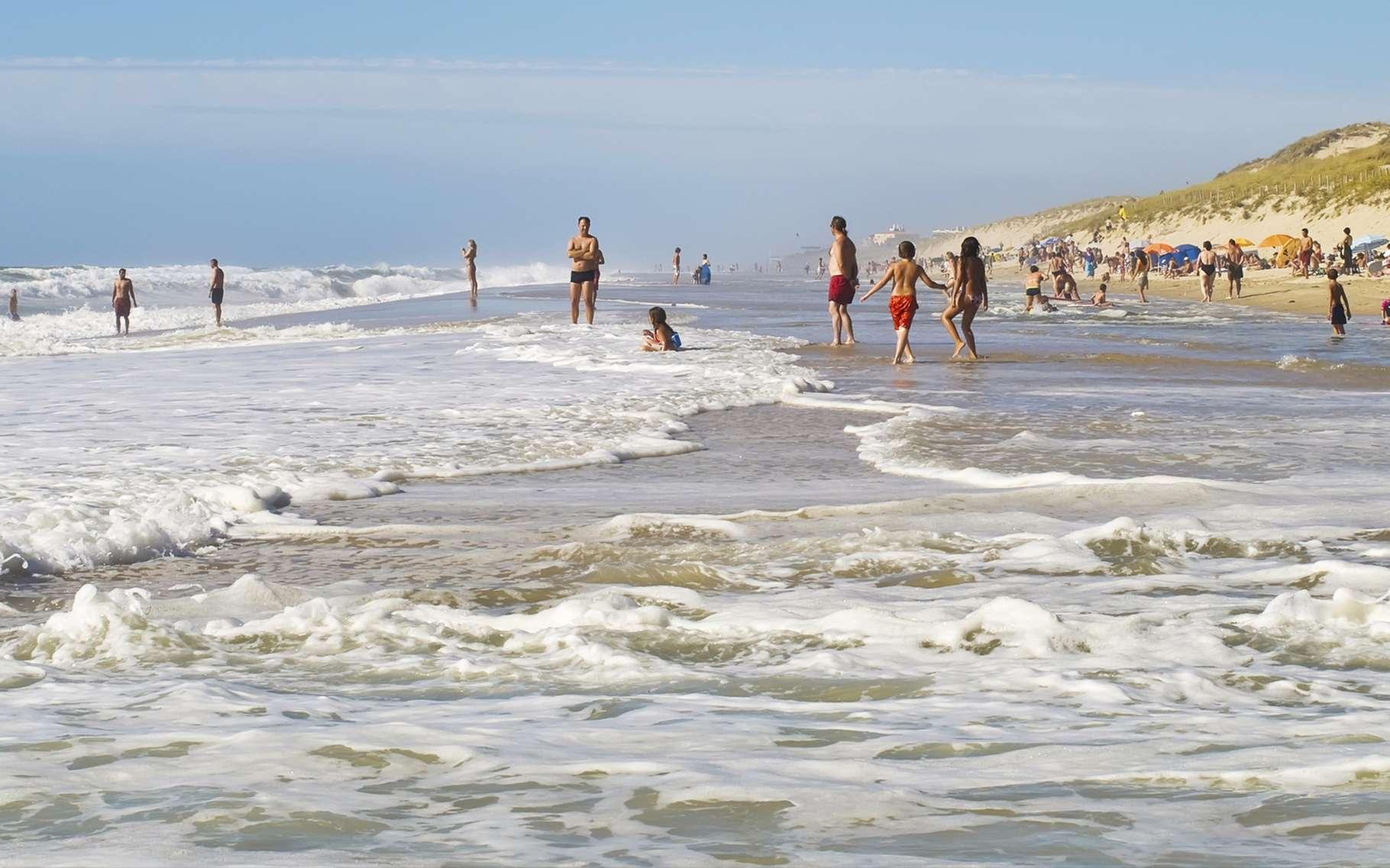 Les baïnes se forment à marée montante le long de la plage. Elles peuvent représenter un danger. © Victorpalych, Shutterstock