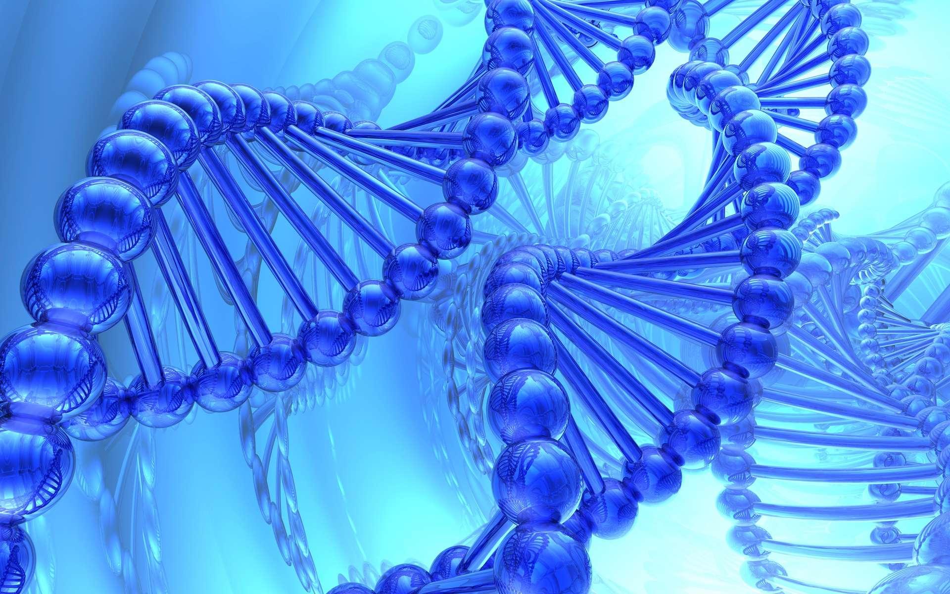 Le test sanguin envisagé permettrait de diagnostiquer des maladies en détectant l'ADN des cellules mourantes. © suravid, Shutterstock
