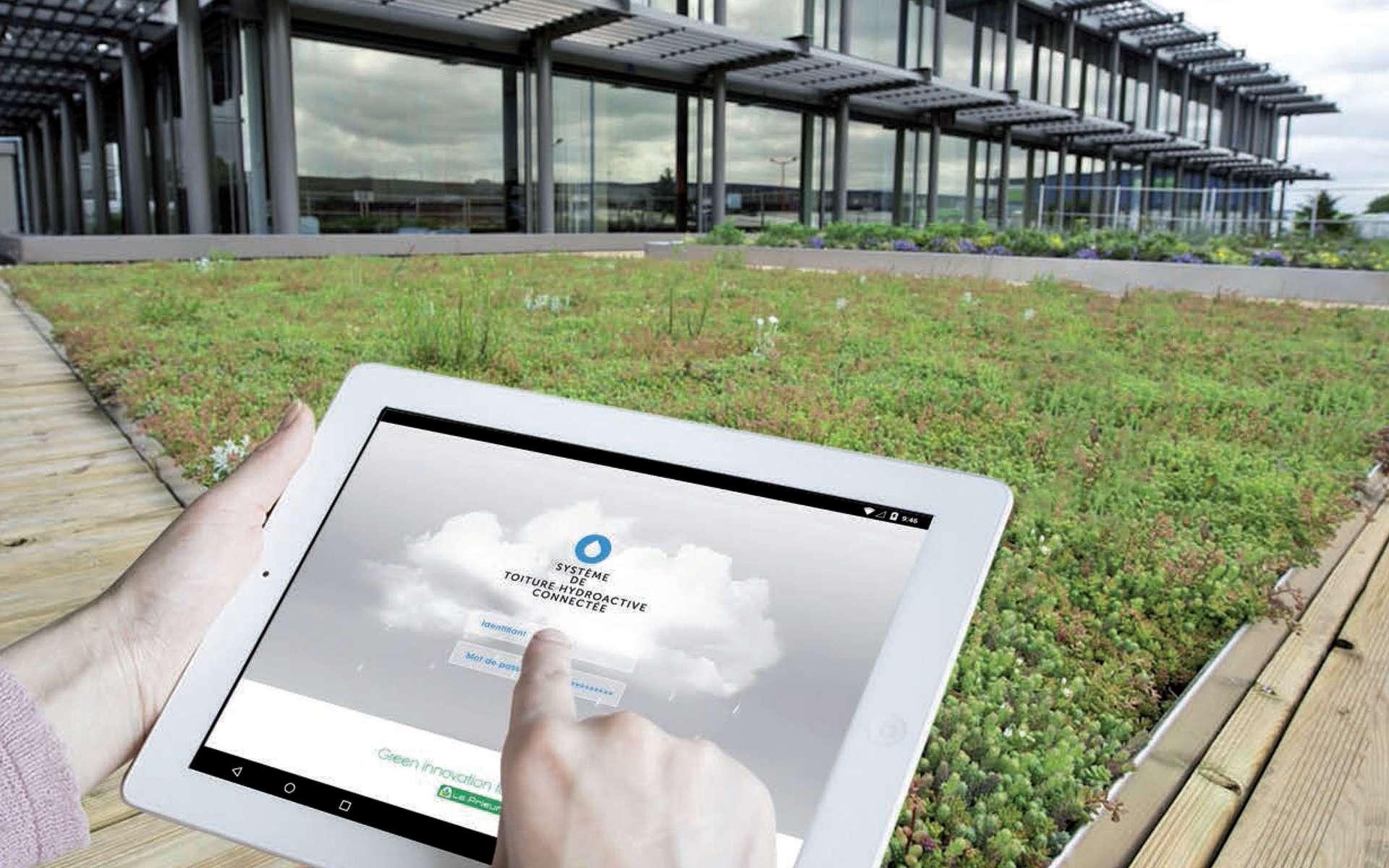 Mondial du bâtiment : quel sera l'habitat du futur ? Ici, Hydroventiv, une toiture végétalisée et connectée. L'eau de pluie est récupérée sous la surface et restituée à la végétation par capillarité quand le temps est sec. Par temps chaud, l'évapotranspiration réduit la température dans le bâtiment. Un exemple de ce que pourrait être l'habitat du futur. © Le Prieuré