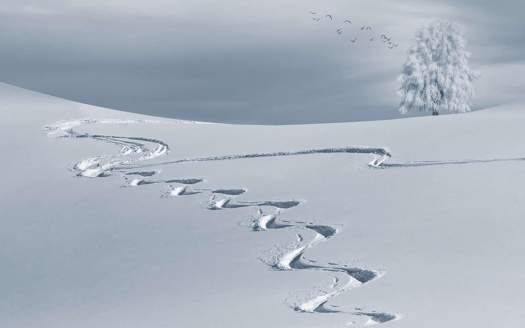 Le ski est-il né en Scandinavie ou en Asie? Les scientifiques sont partagés. © composita, Pixabay, CC0 Creative Commons