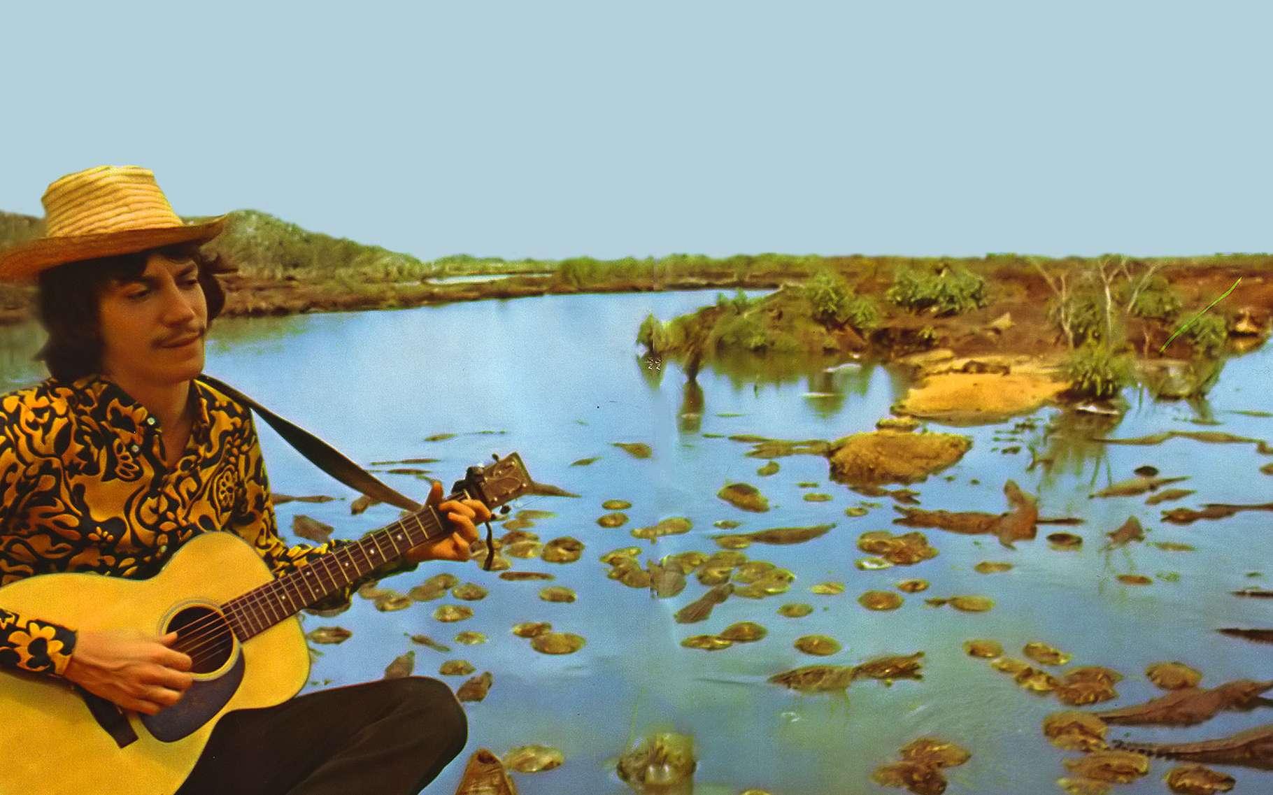 Mon dernier souvenir de voyage toujours à Guama, j'ai fait la connaissance des quelques-uns des quinze mille crocodiles qui peuplent les eaux du parc. © Antoine, DR