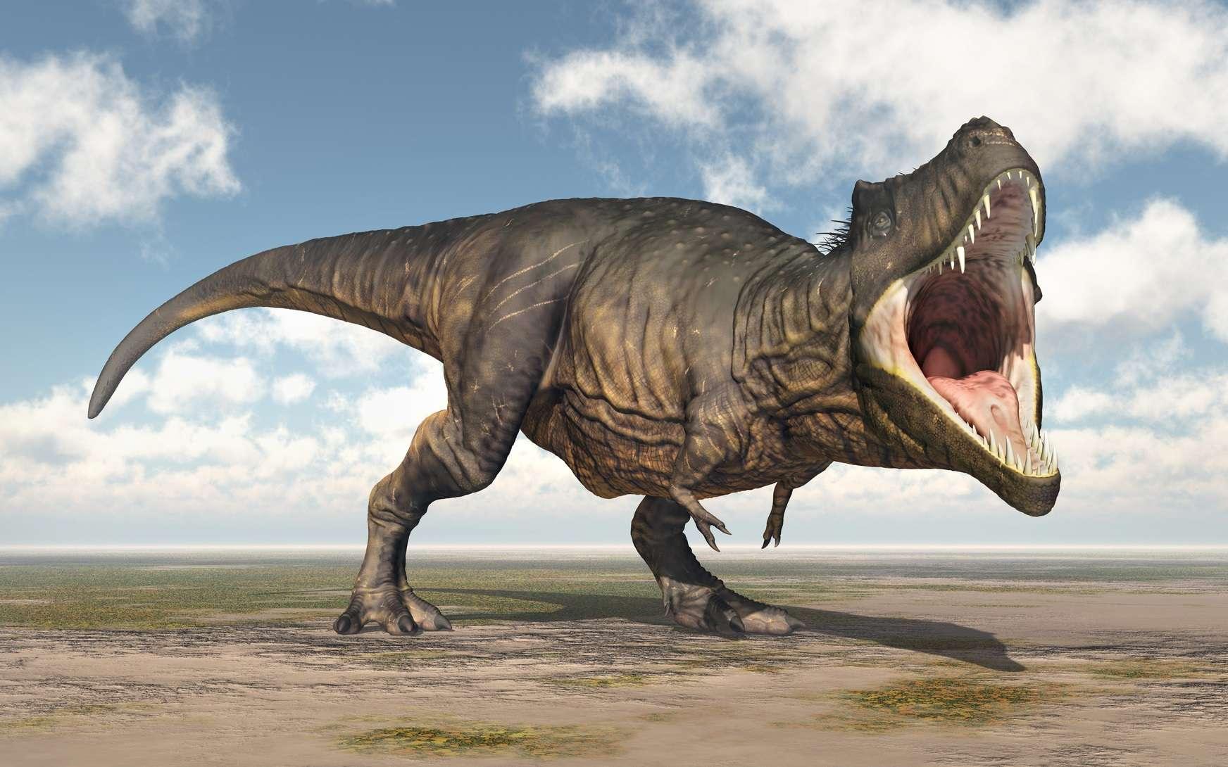 Tout comme les crocodiliens, le T-Rex garde sa langue dans la bouche. © Michael Rosskothen, Fotolia