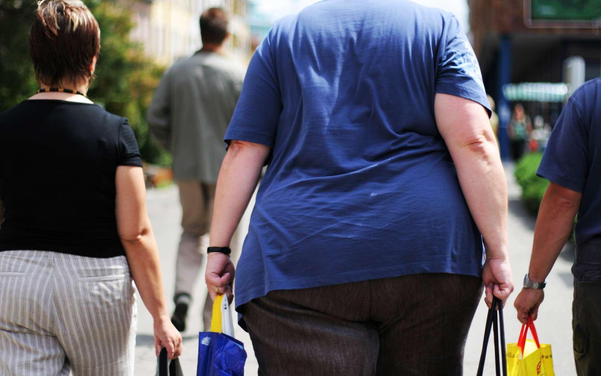 L'obésité touche 13 % de la population adulte mondiale. En 40 ans, le pourcentage des obèses a triplé chez les hommes et plus que doublé chez les femmes, avec des disparités très importantes selon les pays, les pays riches anglophones étant les plus sévèrement touchés. © Jakub Cejpek, shutterstock.com