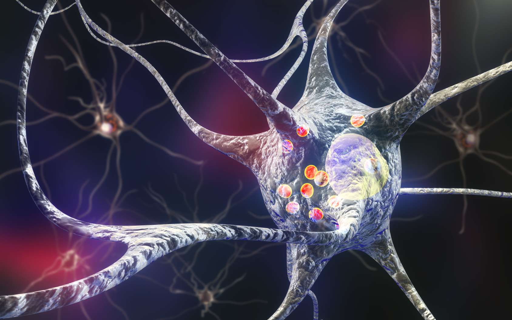 L'appendice pourrait jouer un rôle dans le début de la maladie de Parkinson. © Kateryna_Kon, Fotolia