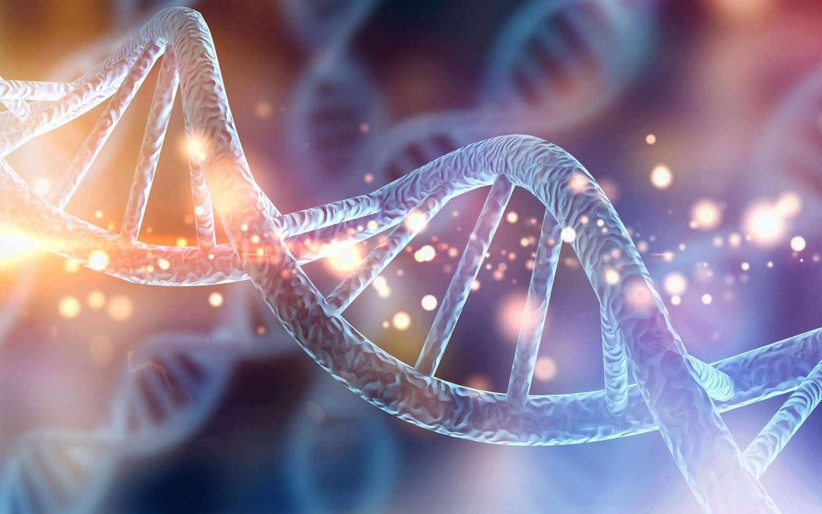 Expert de l'ADN, le généticien étudie le génome des êtres vivants, c'est-à-dire l'ensemble de l' information génétique contenue dans chacune des cellules sous la forme de chromosomes © MG, Fotolia.
