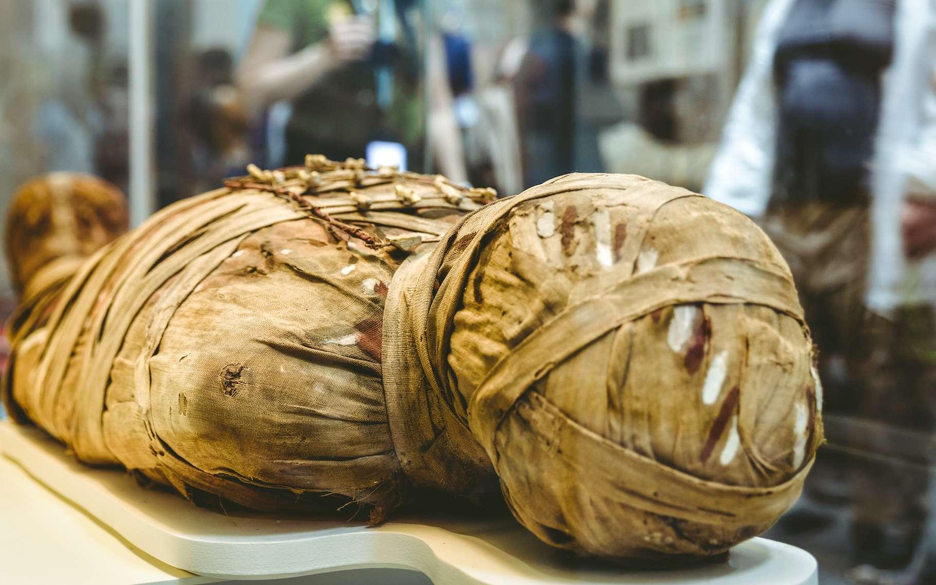 Des chercheurs de l'université de York (Royaume-Uni) sont parvenus à reconstituer la voix d'une momie égyptienne, comme celle prise en illustration ici, vieille de 3.000 ans. © Jaroslav Moravcik, Adobe Stock