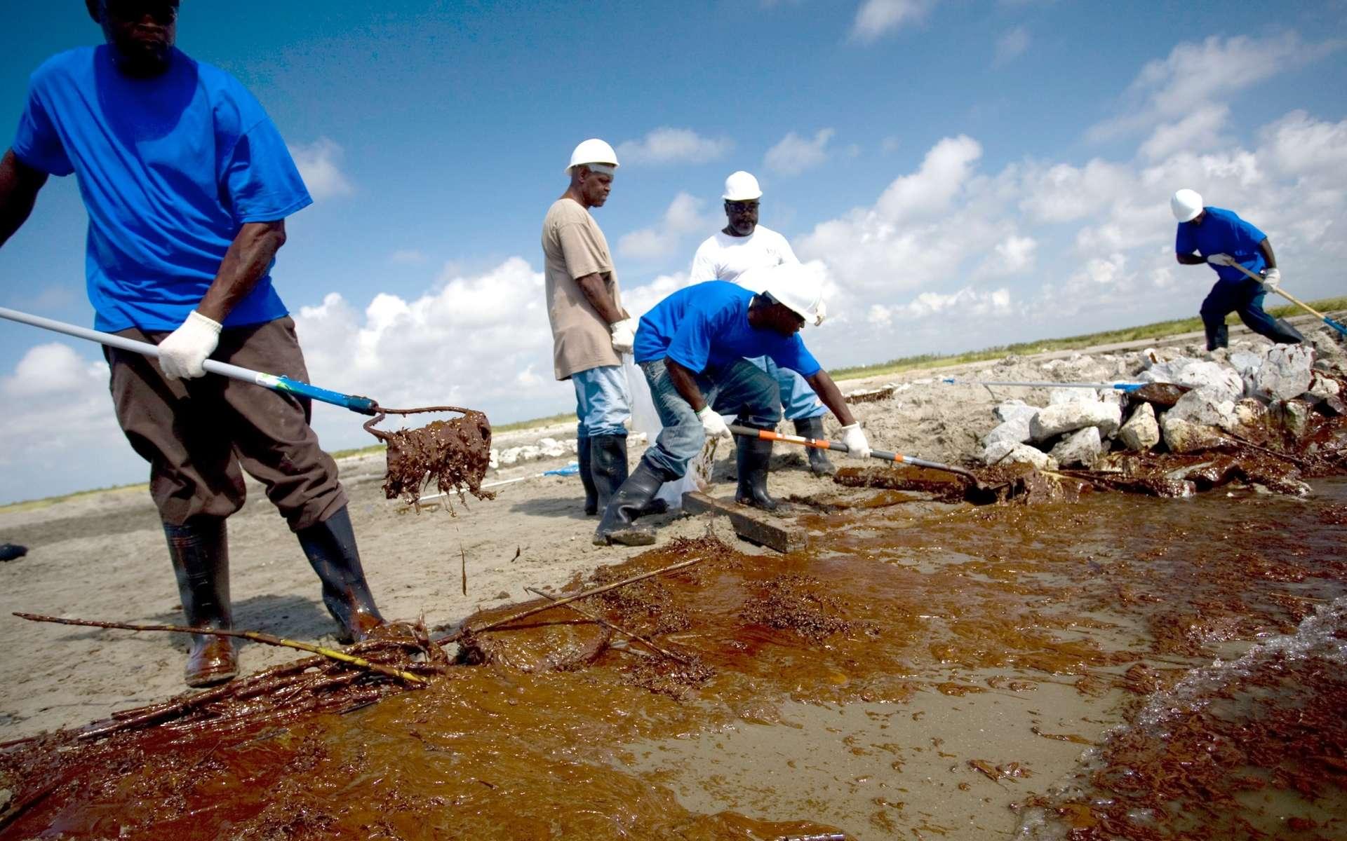 Une équipe de nettoyage sur une plage de l'île Elmer, en Louisiane. © BP