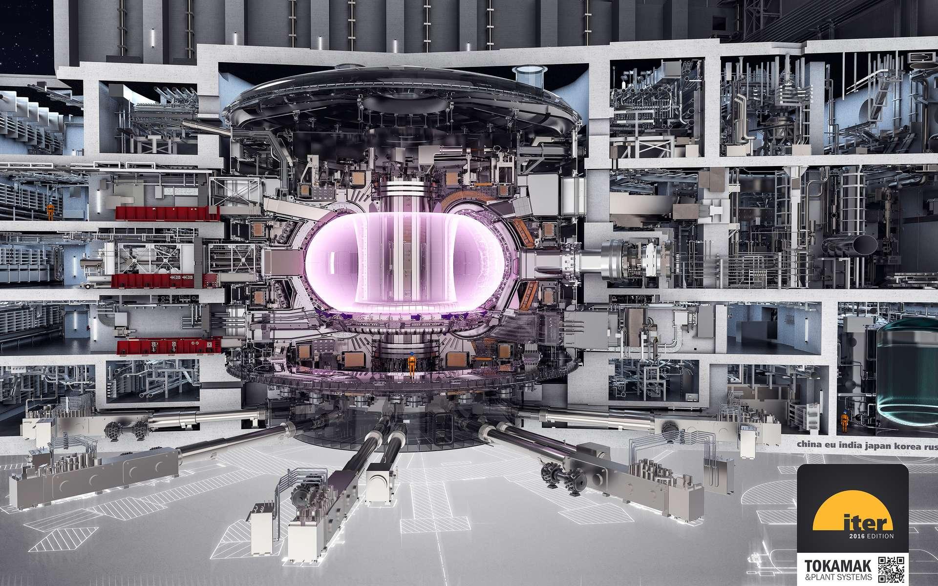 Une vue en coupe du réacteur Iter. Notez l'homme qui donne une idée de la taille de la machine. © Iter Organization