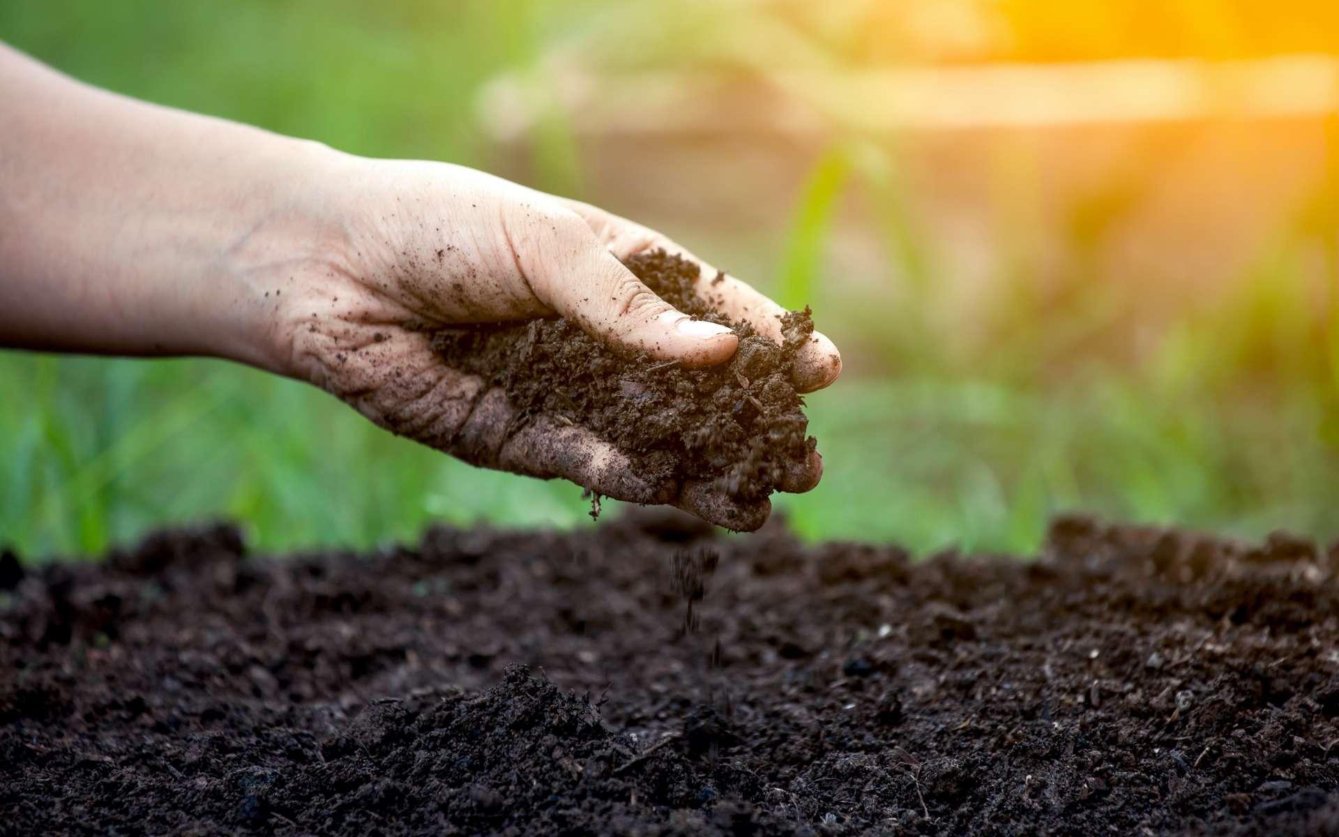 La terre contient naturellement de l'argile, un matériau très malléable adapté à l'impression 3D. © pingpao, Adobe Stock