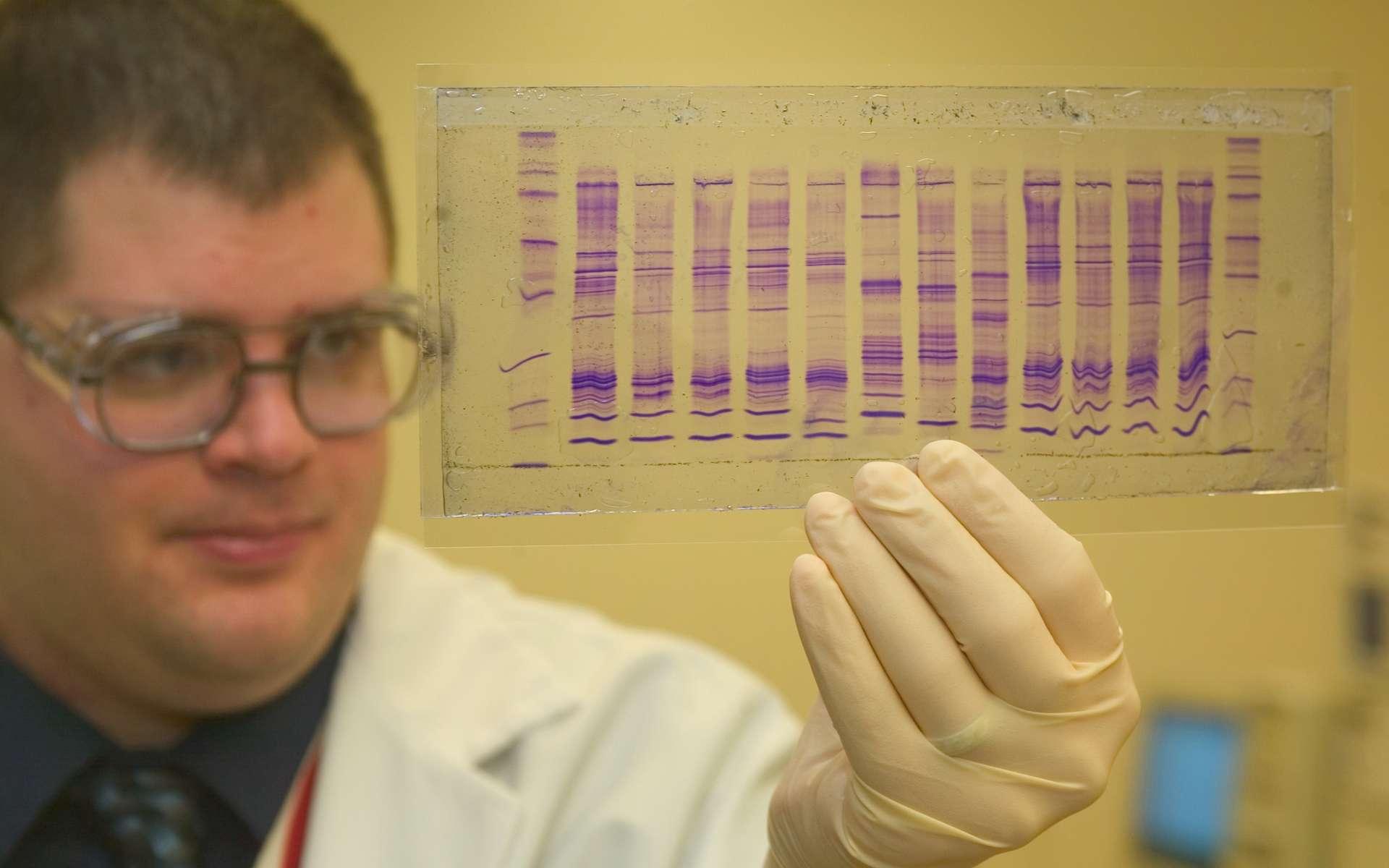 L'étude de l'ADN entre dans le champ de la biochimie. © James Tourtellotte, Wikipedia, DP