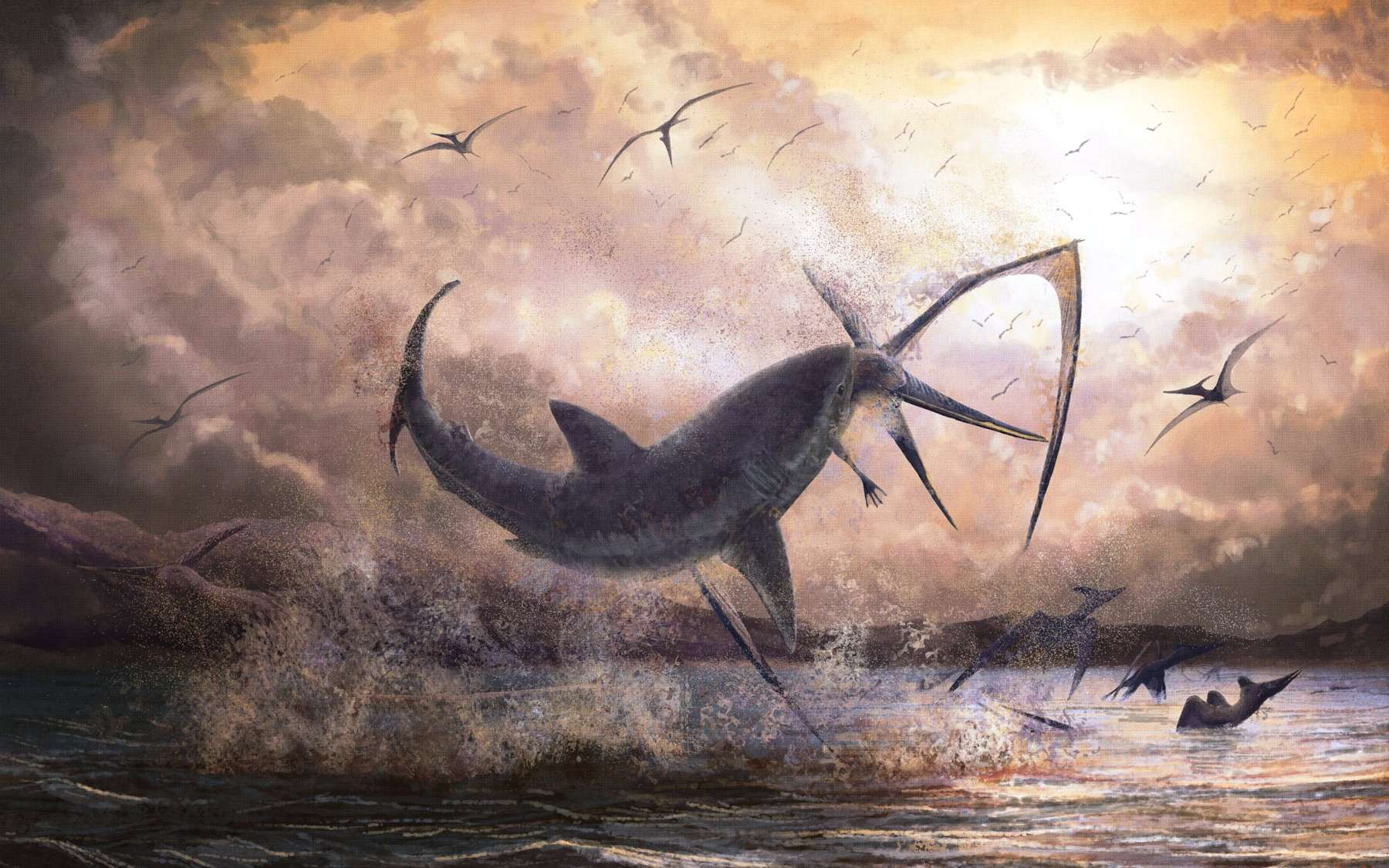 Reconstruction d'artiste montrant un requin de l'espèce éteinte Cretoxyrhina mantelli d'une longueur de 2,5 mètres mordant le cou d'un Pteranodon longiceps de 5 mètres d'envergure. © Mark Witton