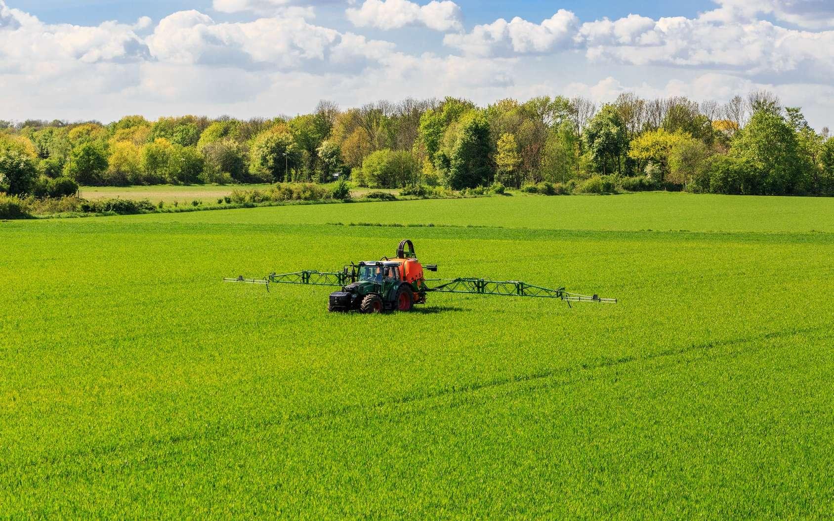 Quel lien entre glyphosate et cancer ? Le glyphosate est le pesticide le plus utilisé au monde. © gerduess, Fotolia