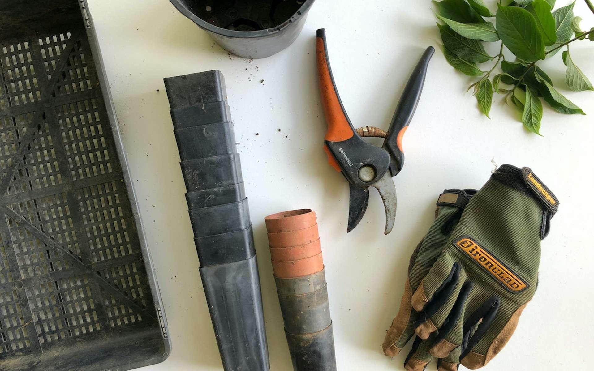 Les bons plans pour entretenir votre jardin à moindre coût © Eco Warrior Princess, Unsplash