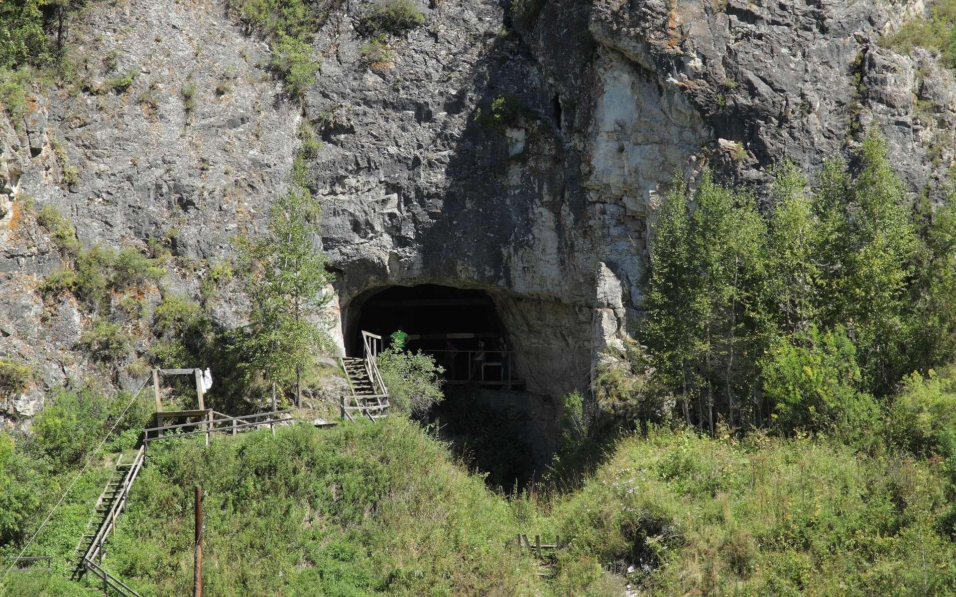 La grotte de Denisova se trouve en Sibérie. © Sergei Zelenski, université de Wollongong