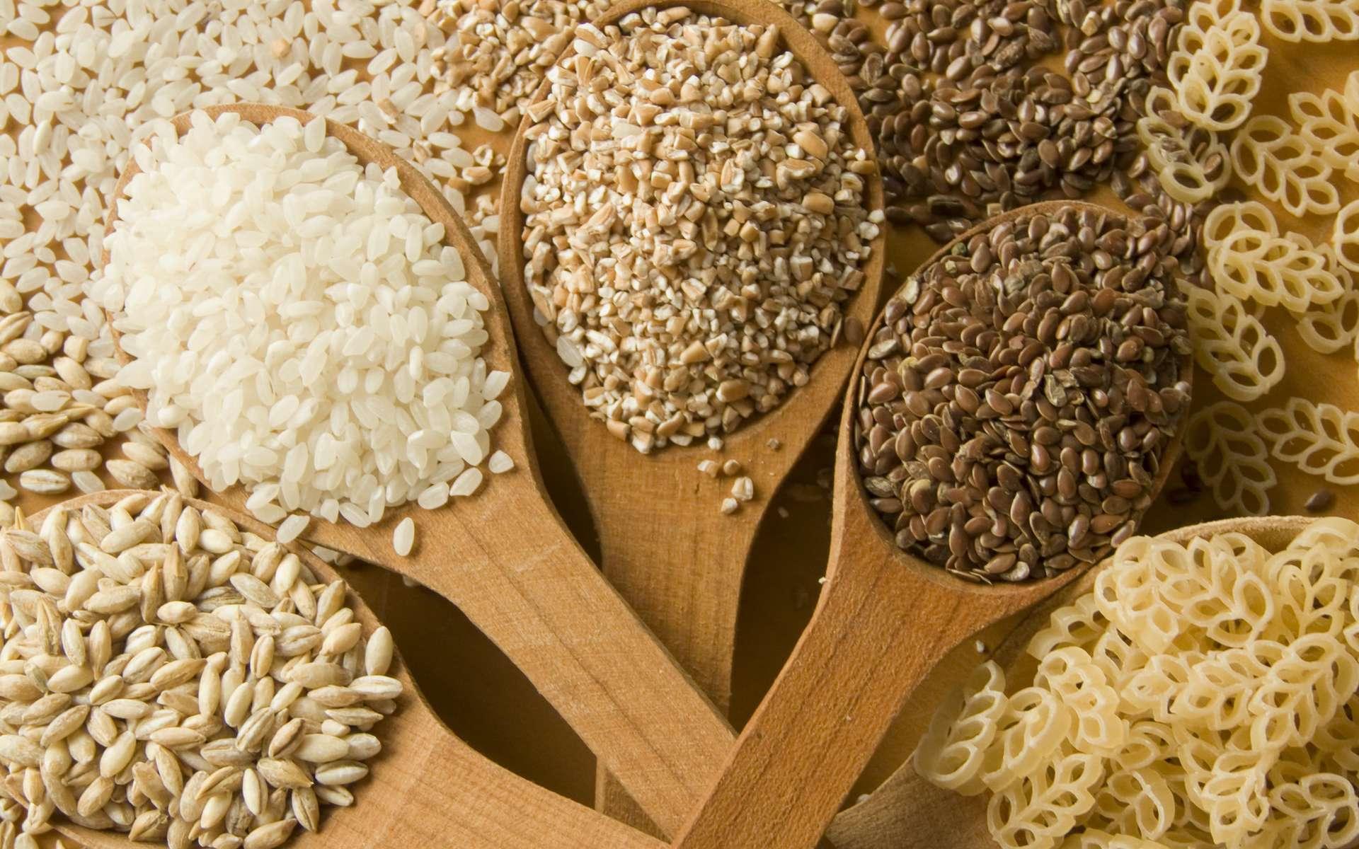 La consommation de céréales raffinées serait associée à une mortalité plus élevée. © AGfoto, Adobe Stock