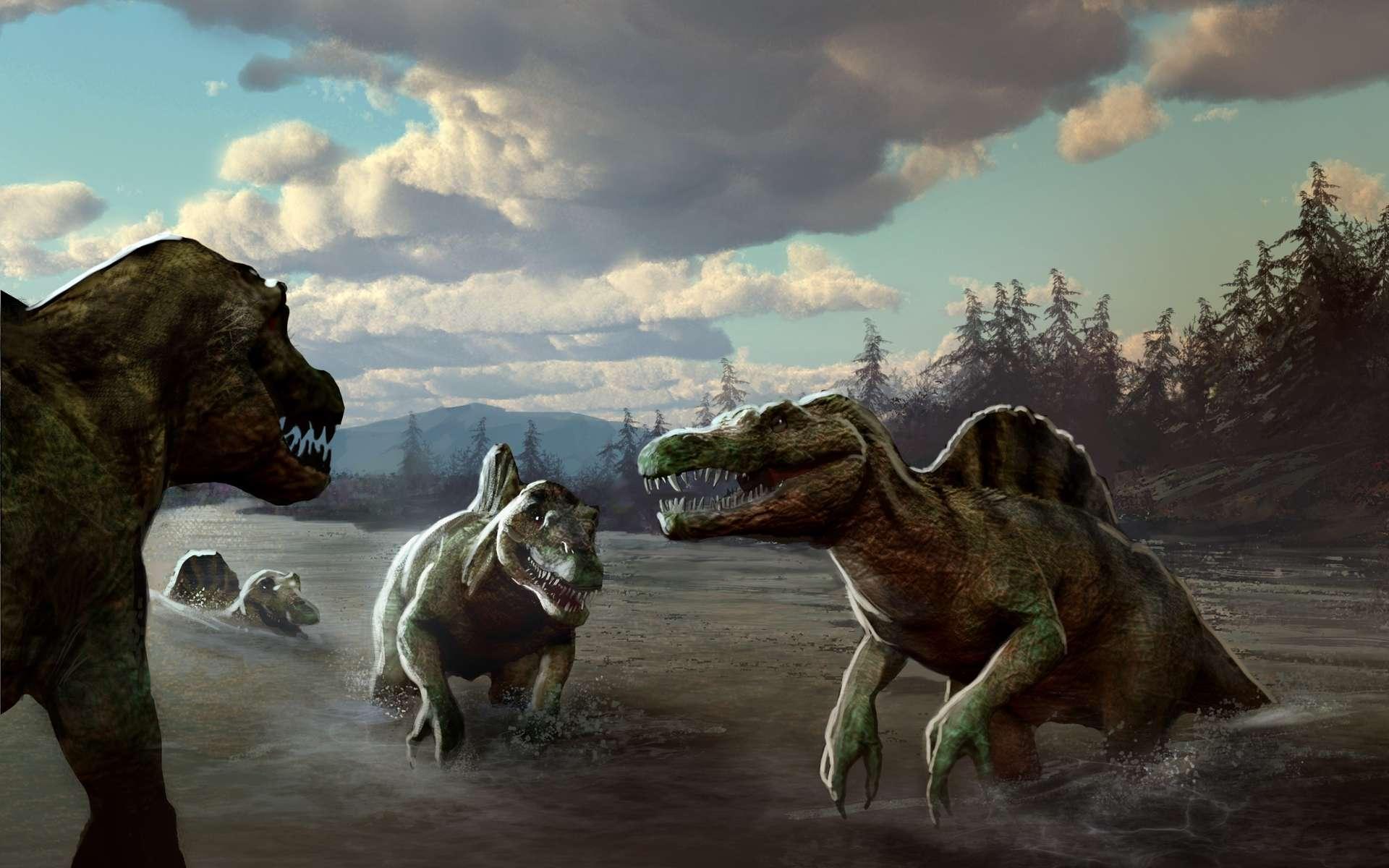 Les isotopes ont rendu leur verdict ! Les spinosaures étaient des animaux semi-aquatiques qui passaient la majeure partie de leur temps dans l'eau comme le font les hippopotames ou crocodiles actuels. Crédit : CNRS-Marc Simonetti
