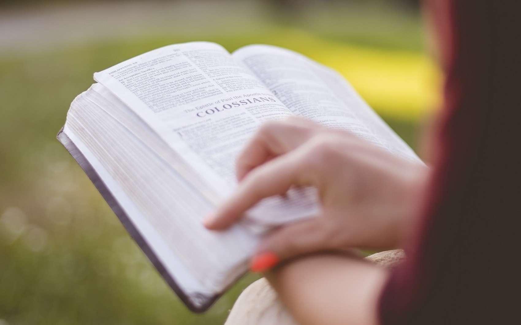 Le mode lecture apporte clarté et confort de lecture. © Pixabay.com
