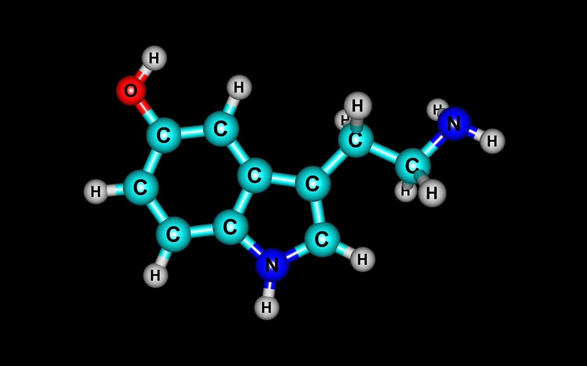 Qu'est-ce que la sérotonine ? © fotolia