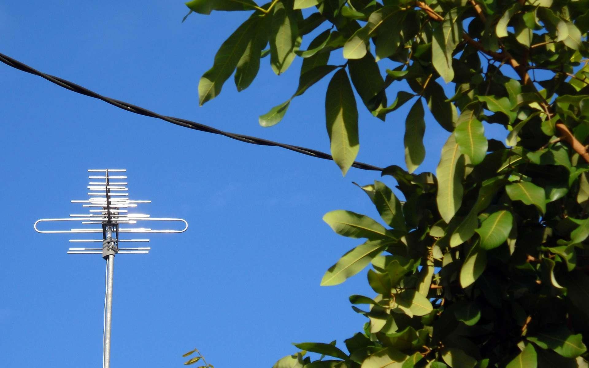 La plupart des antennes hertziennes permettent de recevoir la TNT. © AbdillahAbi, flickr, CC BY 2.0