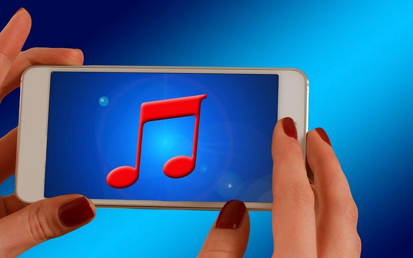 L'avantage des services de musique en streaming est qu'ils offrent l'accès à un catalogue gigantesque, sans pour autant occuper l'espace de stockage du périphérique. © Pixabay.com