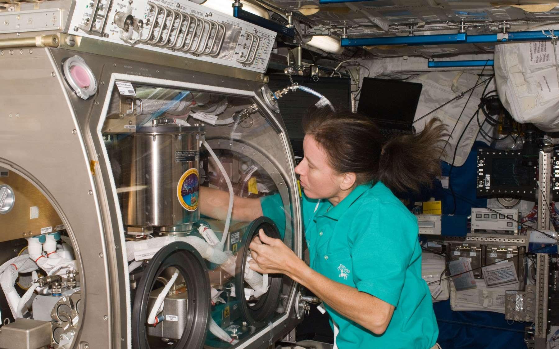 C'est l'astronaute de la Nasa Shannon Walker qui a mis en route NanoRacks. On la voit ici en train de préparer une expérience à l'intérieur de la boîte à gants de l'Esa dans Columbus. Crédit Nasa