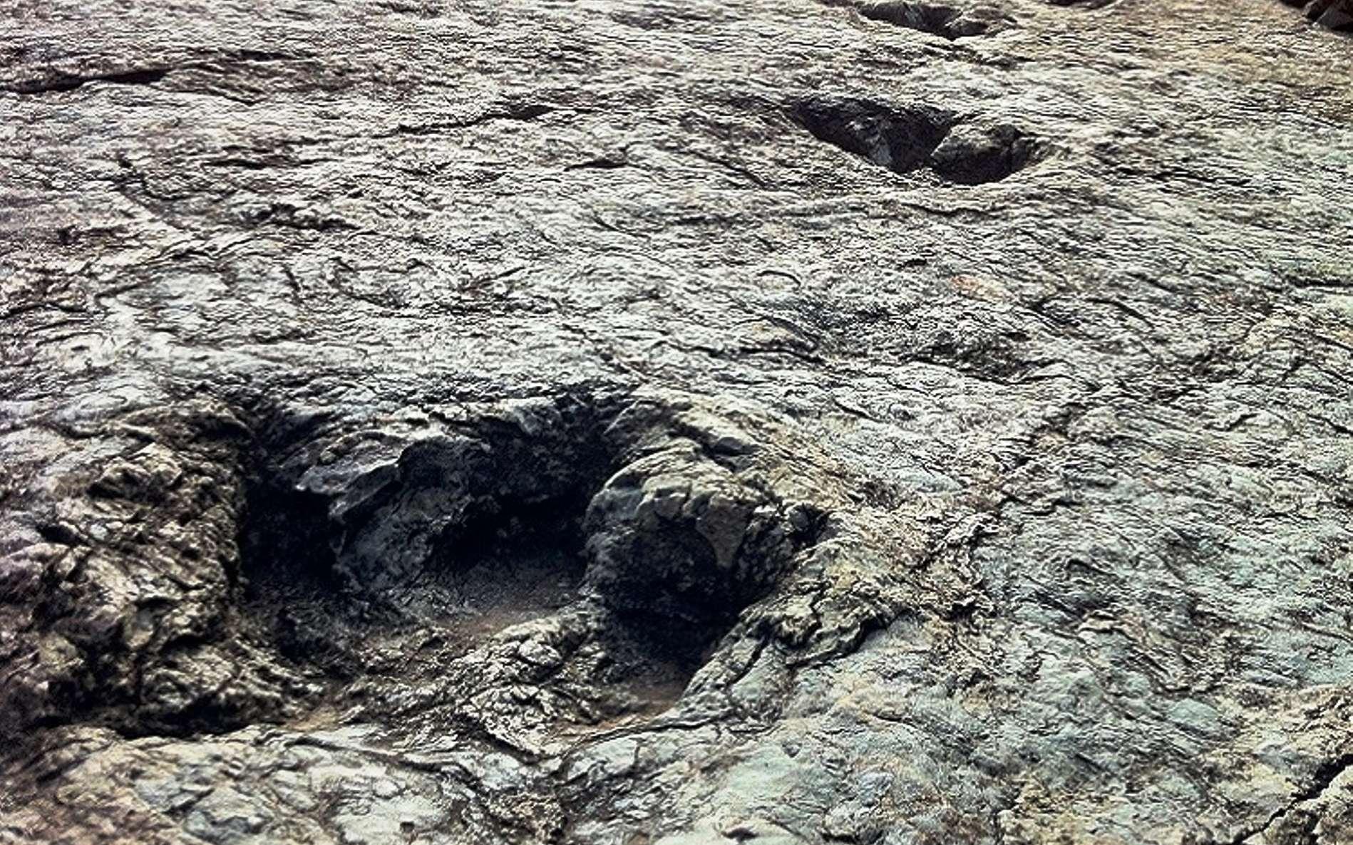 Les empreintes de dinosaures datant du Crétacé supérieur sont très communes près de la capitale administrative de la Bolivie, Sucre. Celles montrées sur cette photo proviennent du site de Niñu Mayu, voisin de celui où vient d'être trouvée une empreinte de pas d'un abélisaure. © www.sucrelife.com