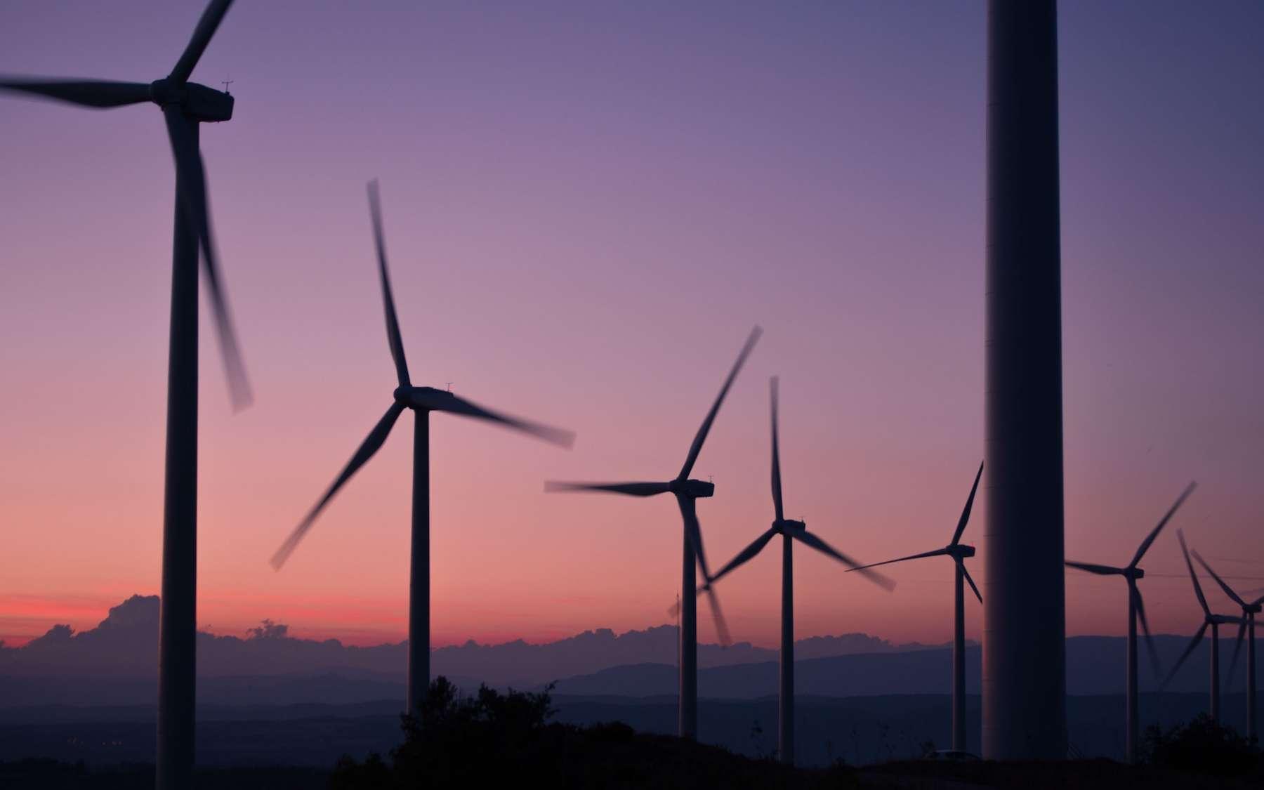 Un champ d'éoliennes en Espagne. © Anna Jiménez Calaf, Unsplash