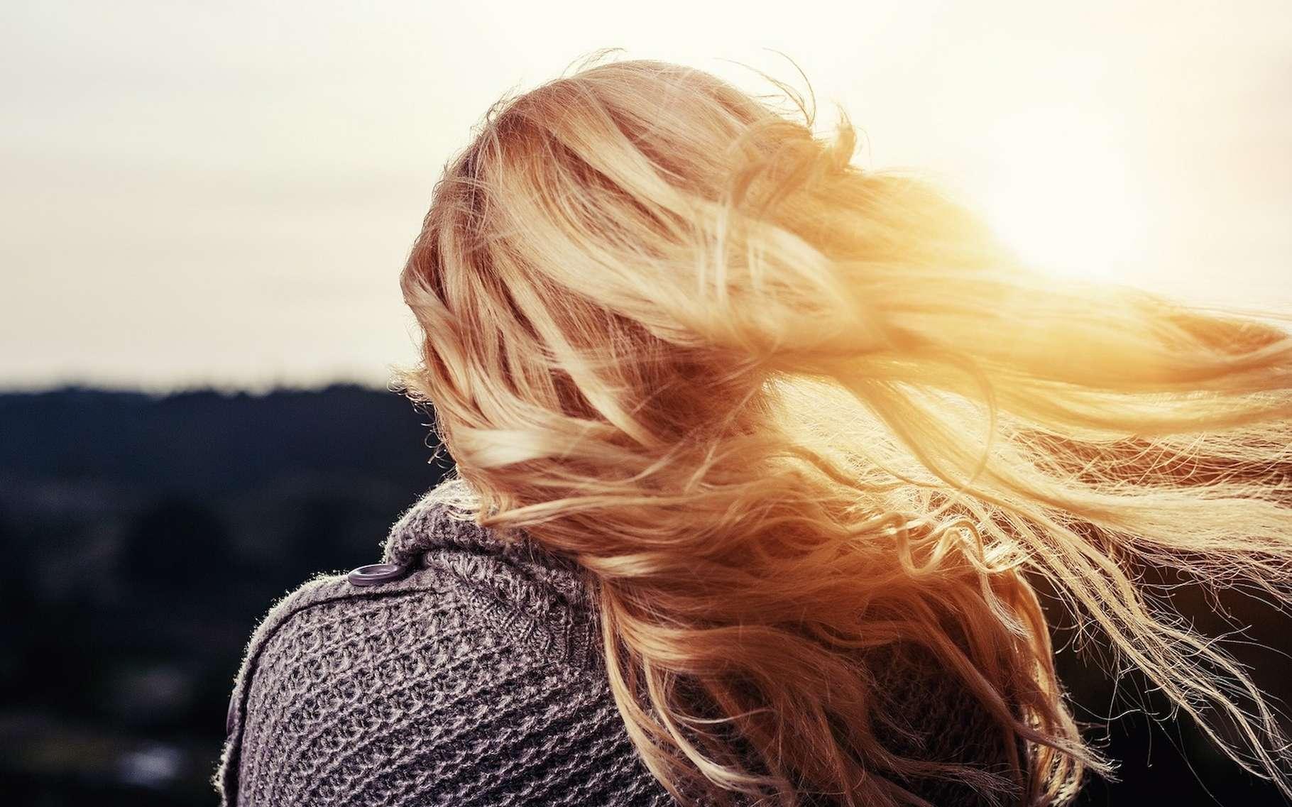 Agressés par le soleil — mais aussi par le sel ou le chlore de l'eau —, nos cheveux ont tendance, l'été, à s'éclaircir. © Free-Photos, Pixabay License
