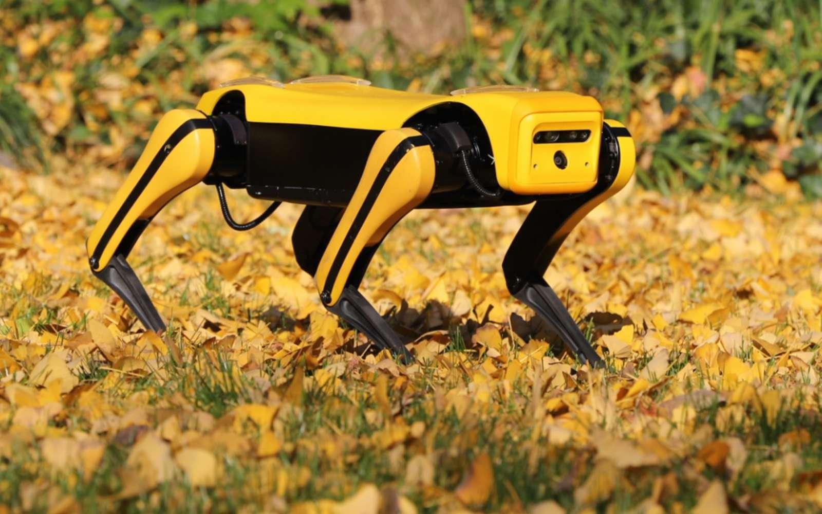 Voici l'équivalent du robot Spot de Boston Dynamics dans sa version chinoise. © Yunshenchu Technology