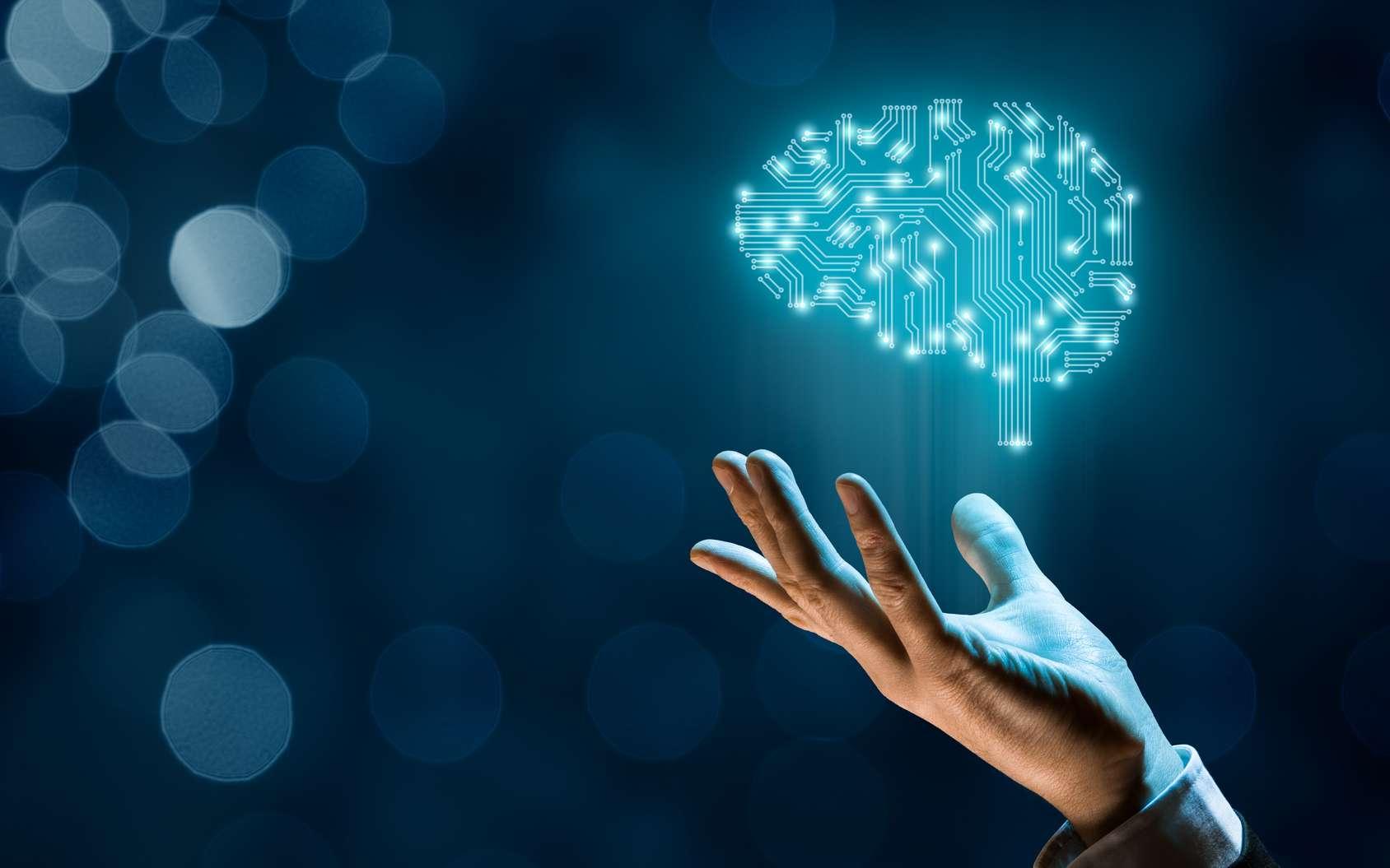 Le deep learning s'inspire directement du cerveau humain pour que la machine apprenne seule à partir de millions d'exemples. © Jakub Jirsák, Fotolia