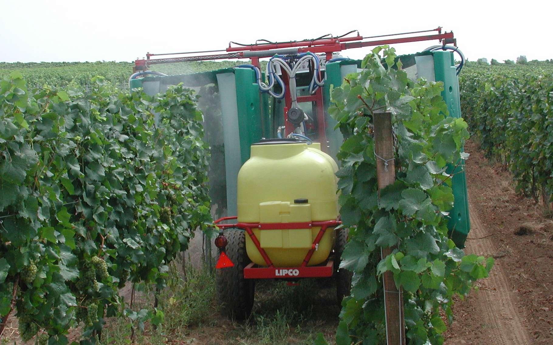Dans les vignes, les pesticides restent encore largement utilisés. Ici, un épandeur adapté. © Karl Bauer, Wikipédia, CC by-3.0 at