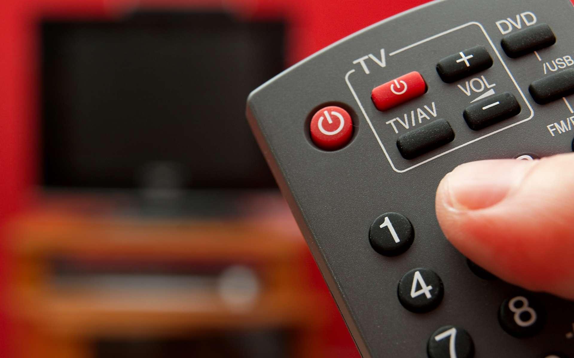 Adaptateur ou nouveau téléviseur : il faudra changer de matériel pour zapper sur la télévision numérique. © Peter Gudela