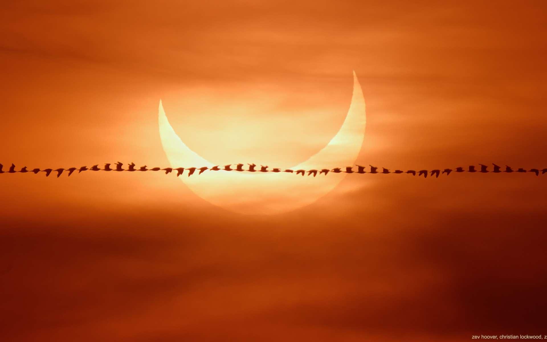 Éclipse partielle solaire photographiée au lever du jour sur une plage du Massachussets. © Zev Hoover, Christian Lockwood, Zoe Chakoian, Apod (Nasa)