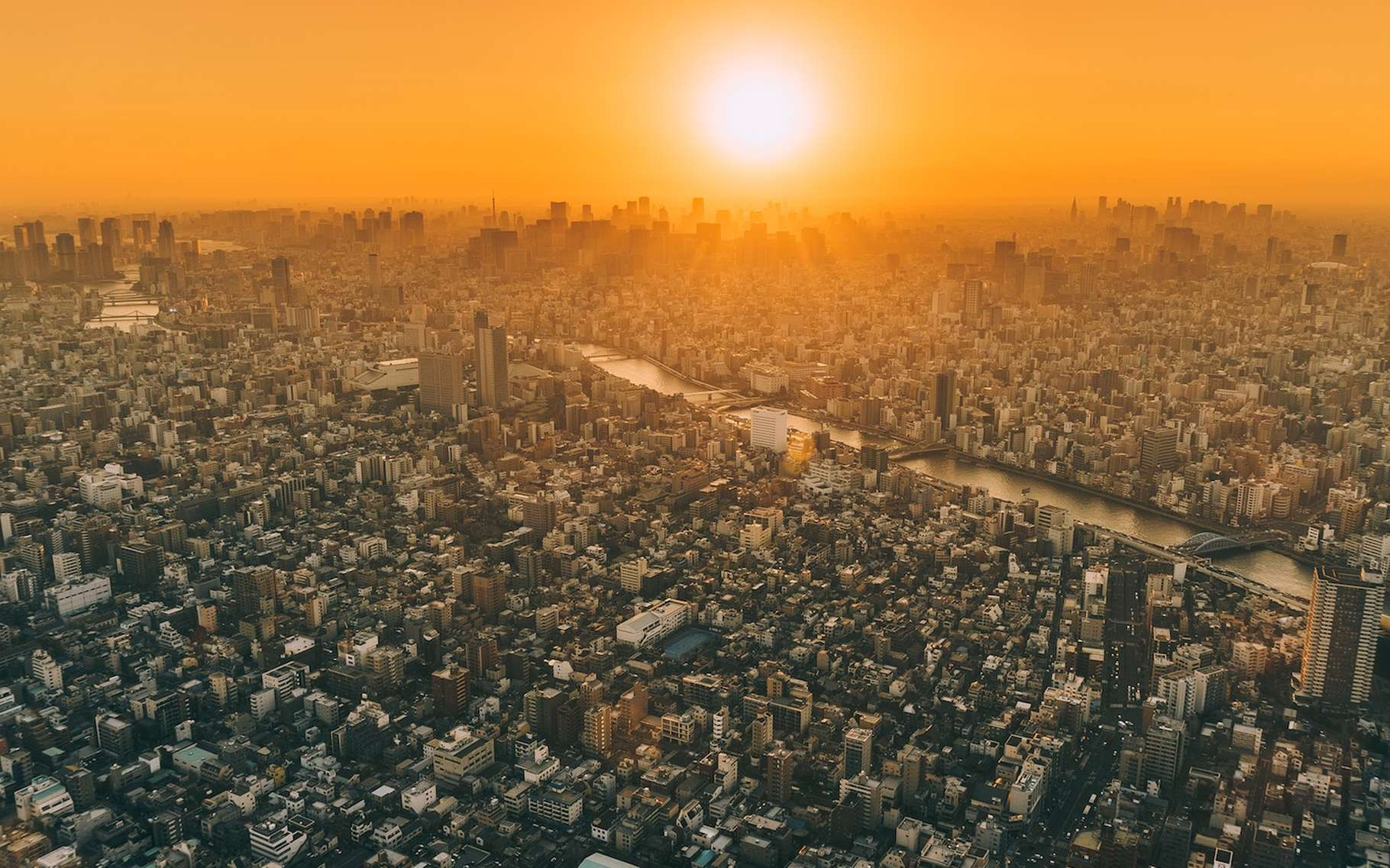 Tokyo peut être considérée comme la plus grande ville du monde. © Arto Marttinen, Unsplash