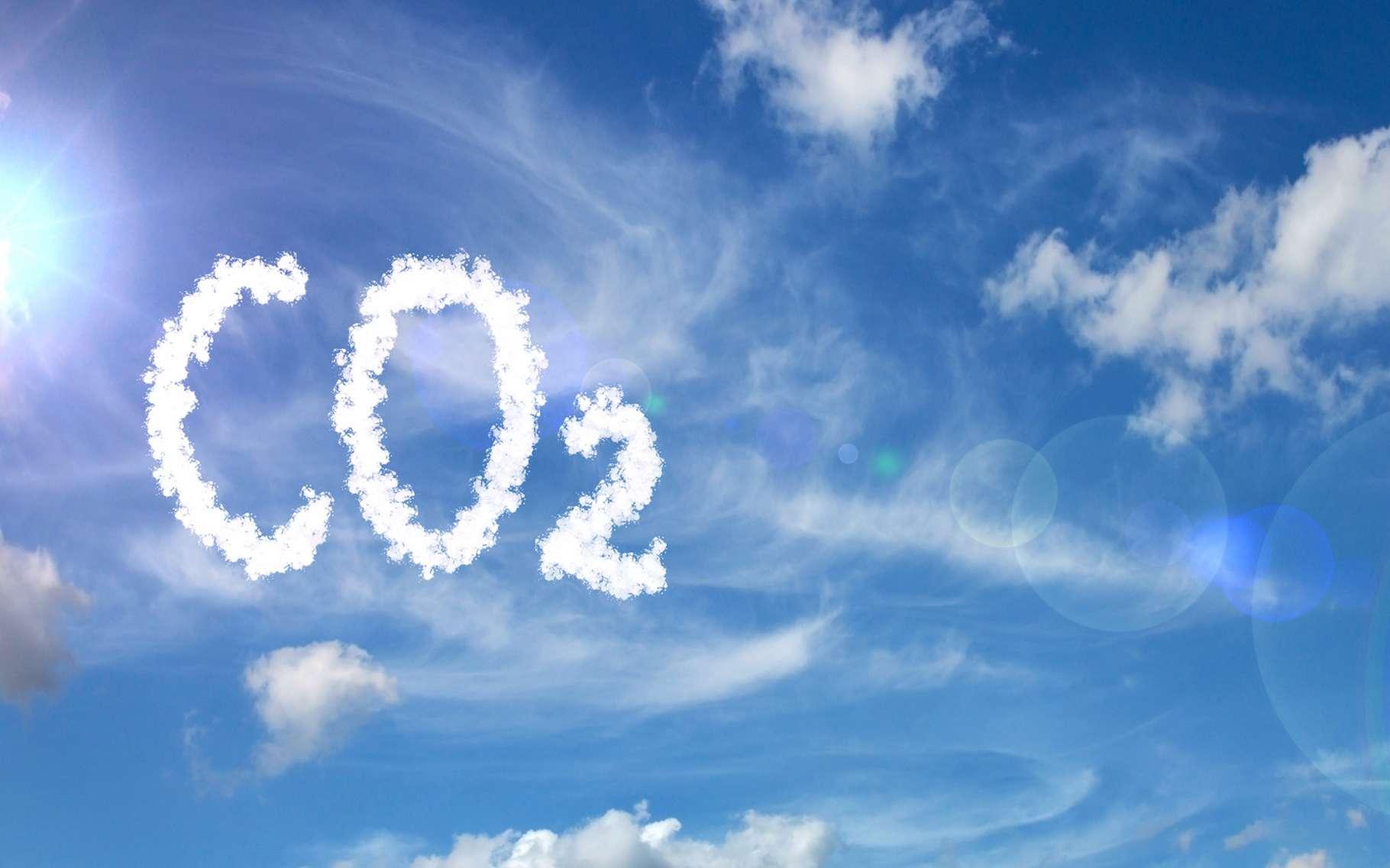 Par le passé, le niveau de CO2 dans l'atmosphère de notre Terre a été tellement haut que des crocodiles vivaient en Arctique. De quoi donner un aperçu de ce à quoi nos émissions de gaz à effet de serre d'aujourd'hui nous exposent. © Pawel Horazy, Adobe Stock