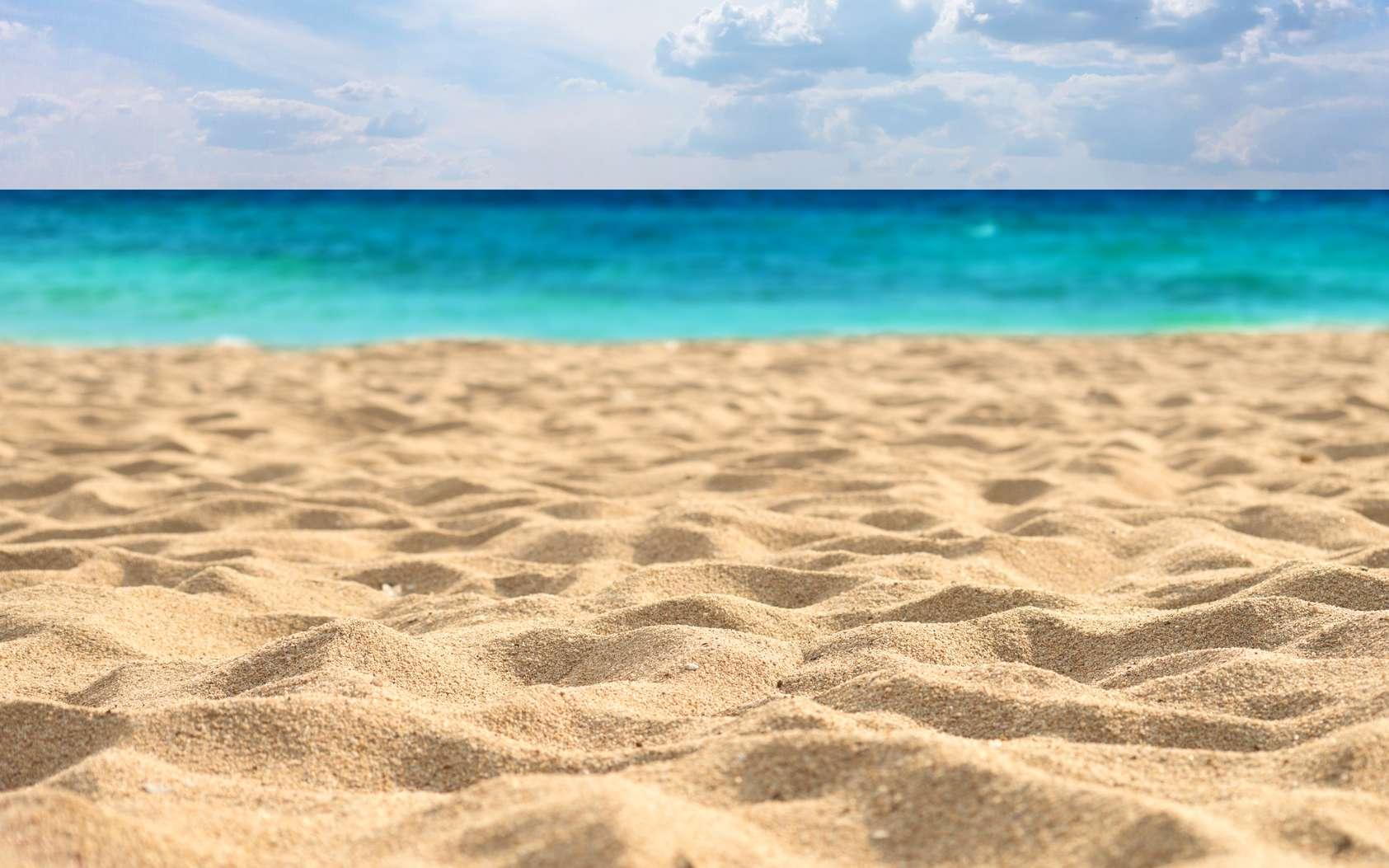 Les dépôts de sable se font suivant les agitations du vent et de l'eau qui sculptent des paysages ondoyants dans les déserts et sur les rivages. © rufar, fotolia