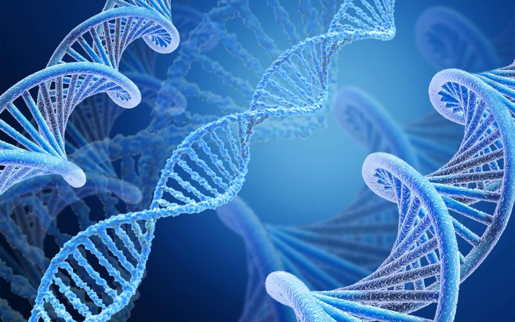 Certains virus bactériophages utilisent un code génétique différent du nôtre. © BillionPhotos.com, Adobe Stock