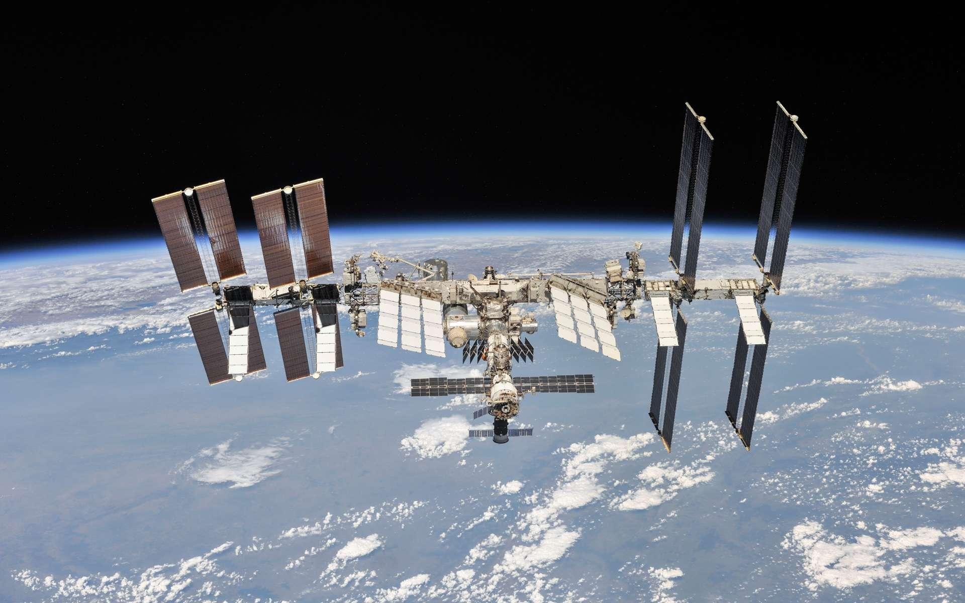 À point, saignant, bleu ? La perspective de cosmonautes savourant un rôti dans l'espace est devenue un peu moins théorique après la création de viande à bord de la Station spatiale internationale (ISS). © HO, Nasa/Roscosmos, AFP