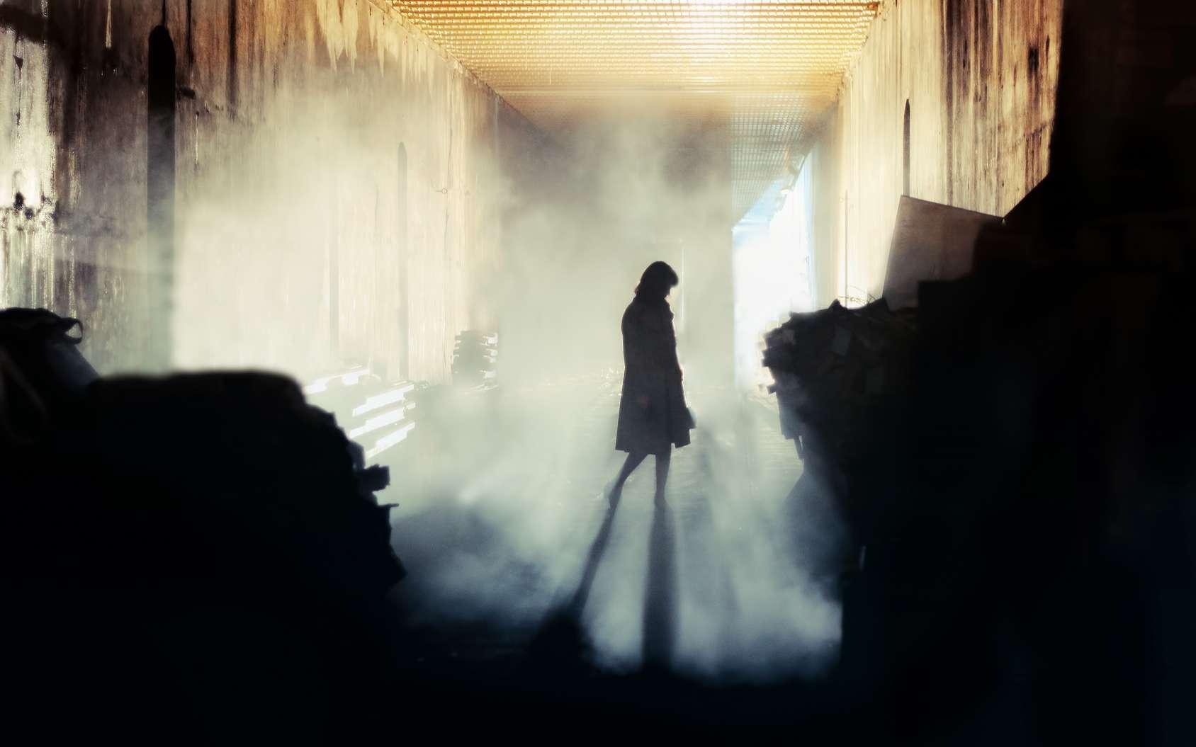 Le Mulet, le conquérant de l'ombre. Même ses généraux ne connaissent pas son visage. © Mjgolby, Fotolia