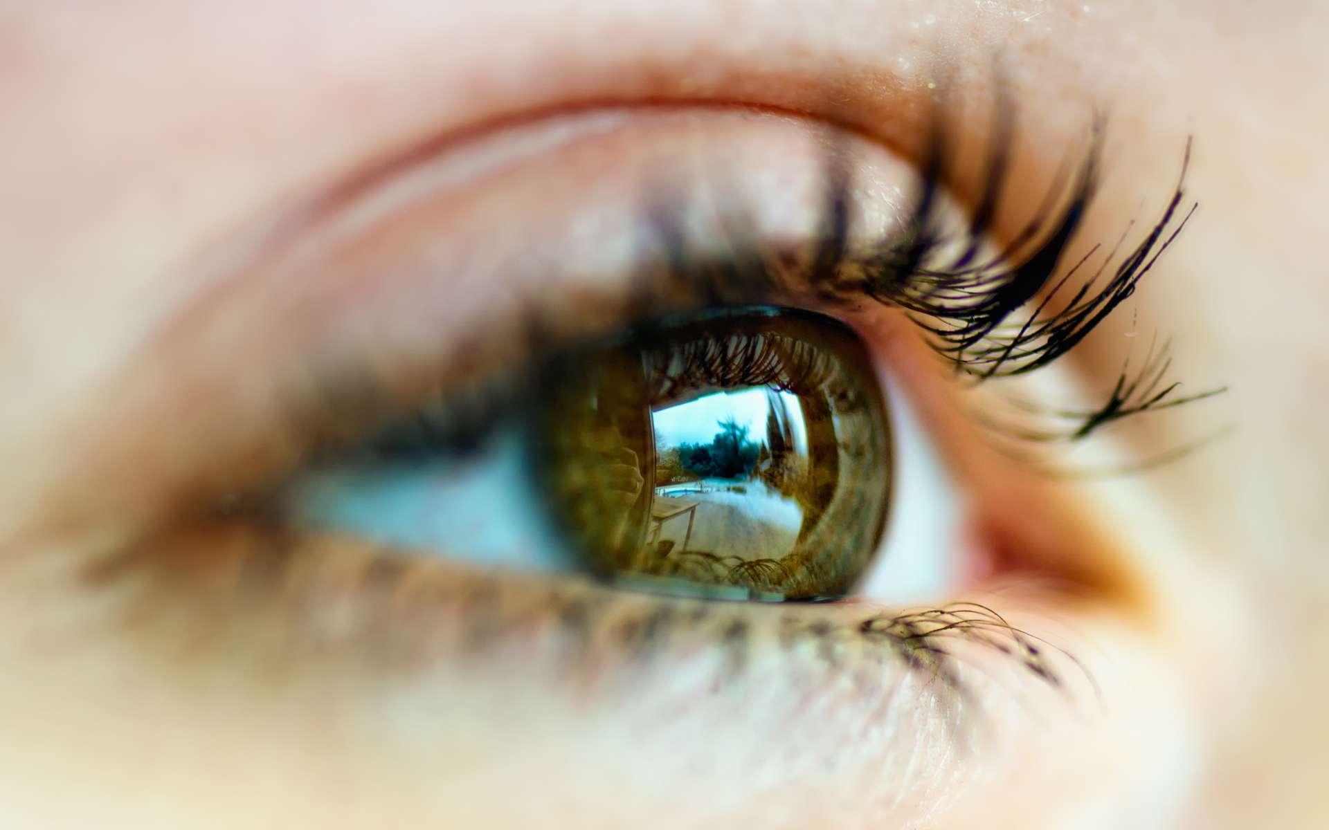La cataracte touche environ la moitié des plus de 70 ans. © Peter Gorges, Flickr, CC by nc nd 2.0