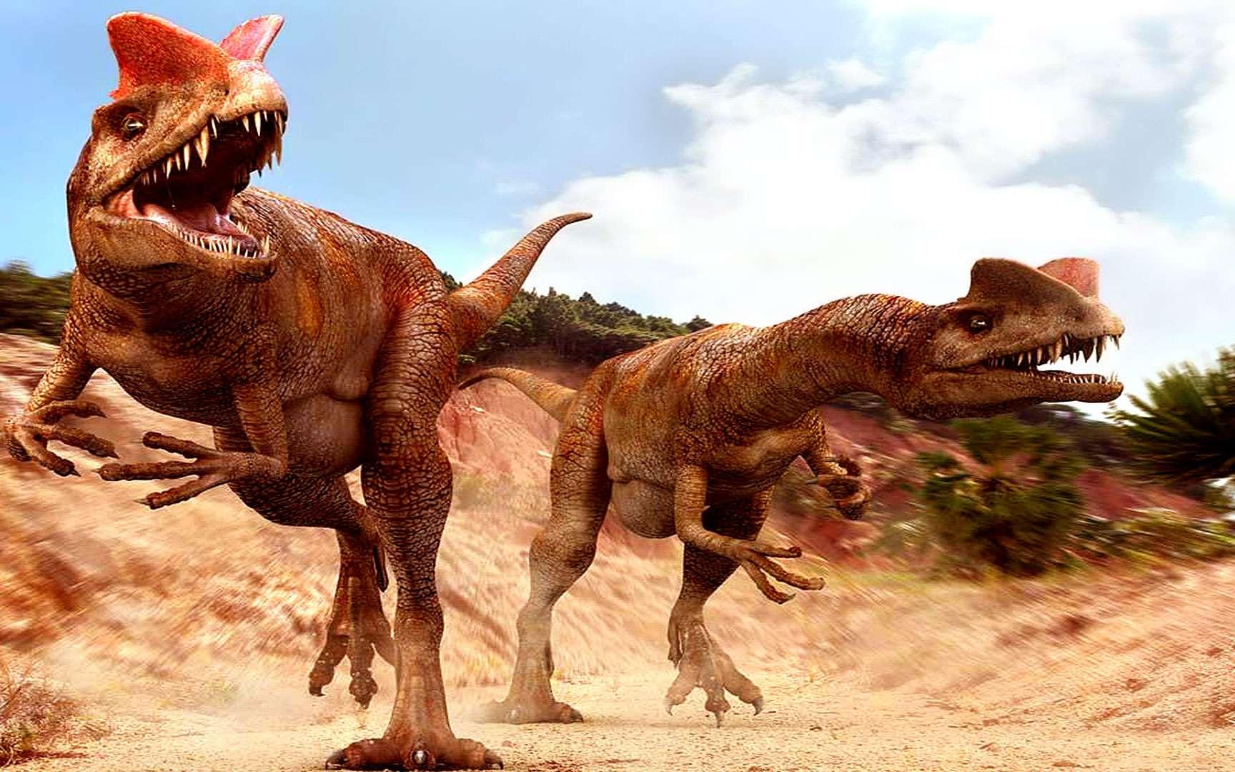 Dilophosaurus. Vous n'auriez jamais aimé croiser un Dilophosaurus. Vous auriez vu ce « lézard à deux crêtes » en Chine ou en Arizona au début du Jurassique, entre 205 et 185 millions d'années avant notre ère (ou dans Jurassic Park de Spielberg également). Il est très vraisemblable qu'il vous aurait tué à l'aide des griffes qu'il portait aux pattes avant et arrière. Vous n'auriez pas vraiment apprécié ! © Courtesy of Jon Hughes www.pixel-shack.com