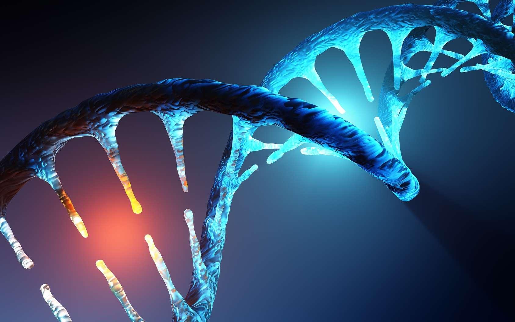 Nous connaissons l'ADN sous la forme d'une hélice double brin. Mais il présente parfois d'autres structures. Une nouvelle forme a ainsi été découverte dans des cellules humaines. © JohanSwanepoel, Fotolia