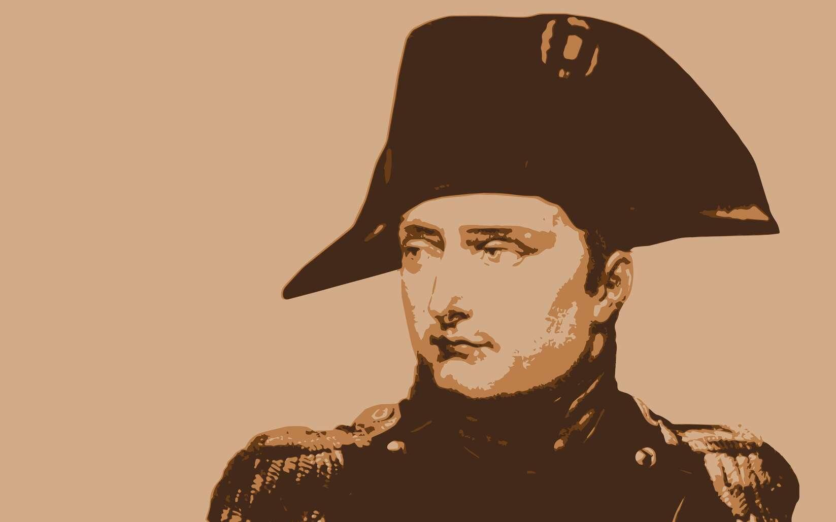 Portrait de Napoléon Bonaparte. © pict rider, fotolia
