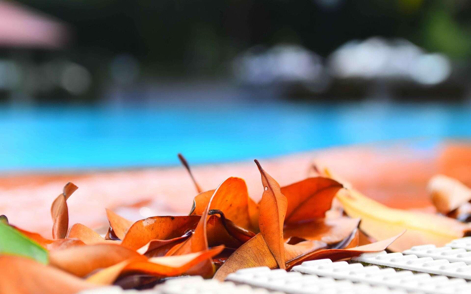 Autre coût potentiel à avoir en tête, celui du chauffage de l'eau qui, si on veut profiter presque toute l'année des baignades, peut vite représenter une grosse somme. © pocket_cinema, Pixabay, CC0 Creative Commons