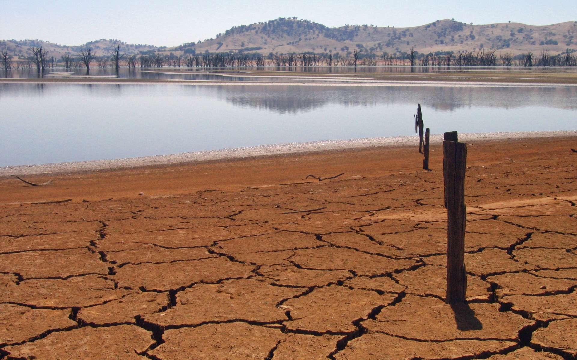 Le changement climatique pourrait réduire la surface des terres exploitables par l'agriculture. © Tim J Keegan, Flickr, CC by sa 2.0