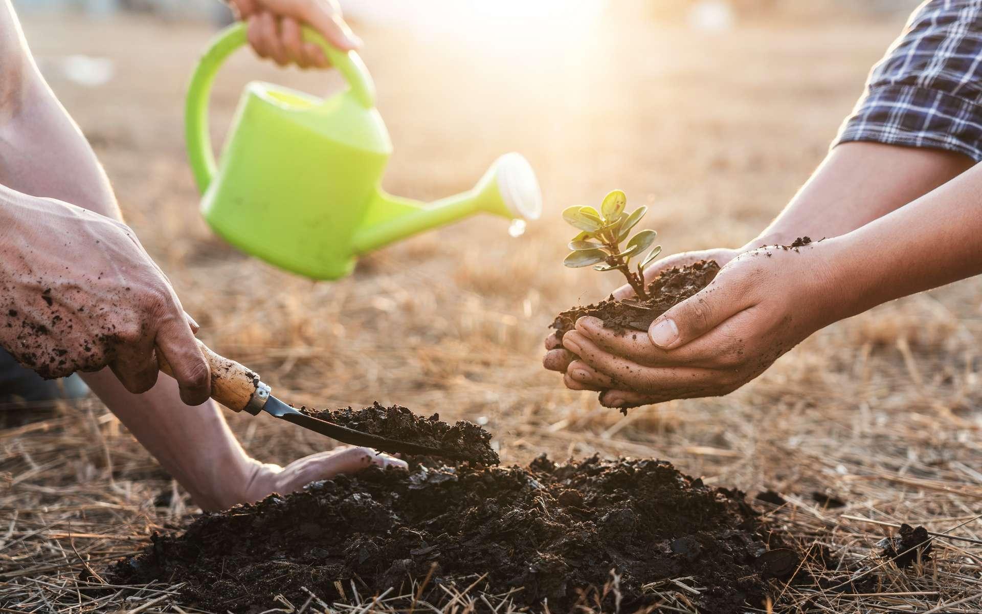 Le 5 juin, c'est la Journée mondiale de l'environnement ! © Thitiphat, Adobe Stock