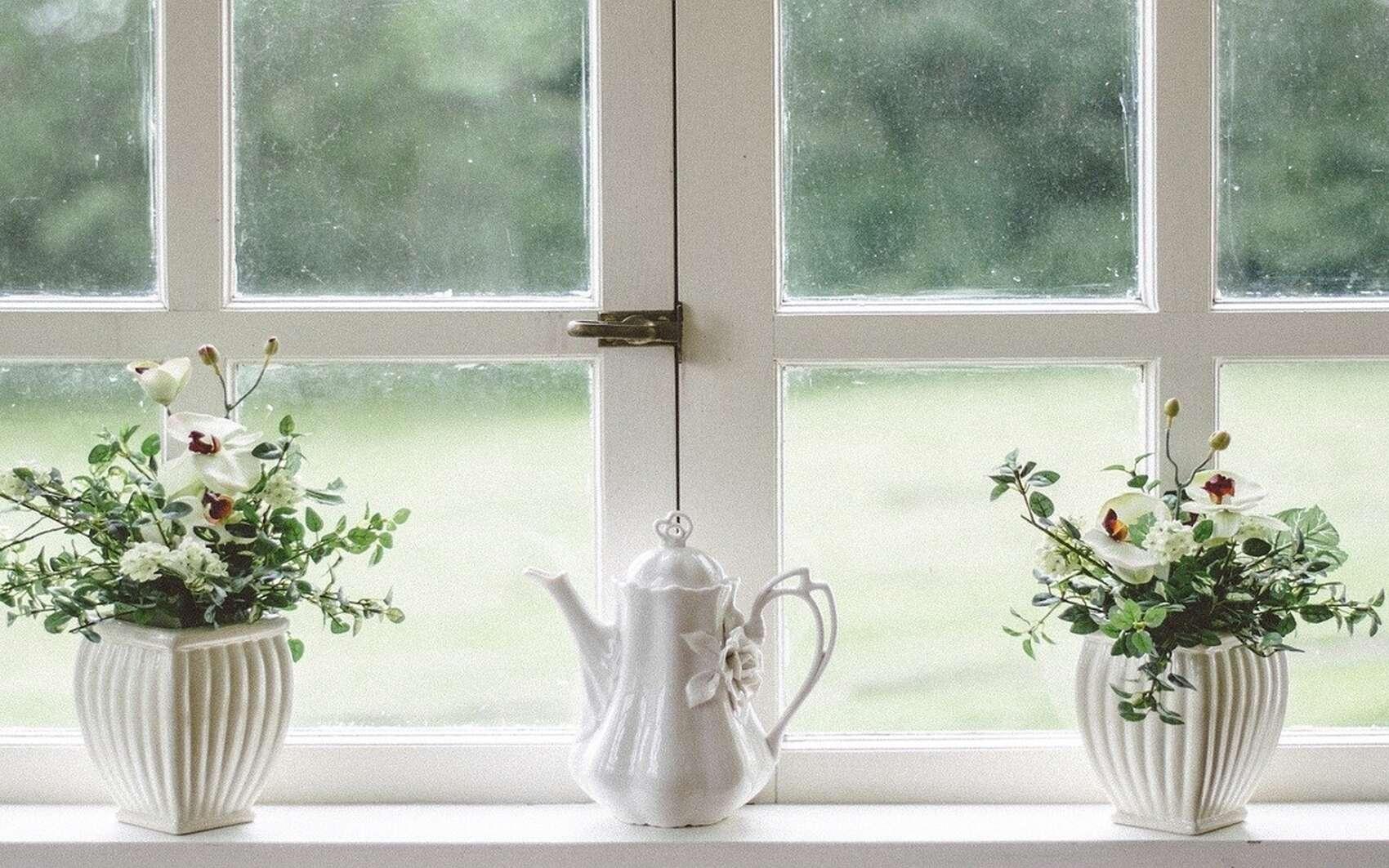 La qualité de l'air intérieur est importante à surveiller dans cette période de confinement. © Stocksnap, Pixabay