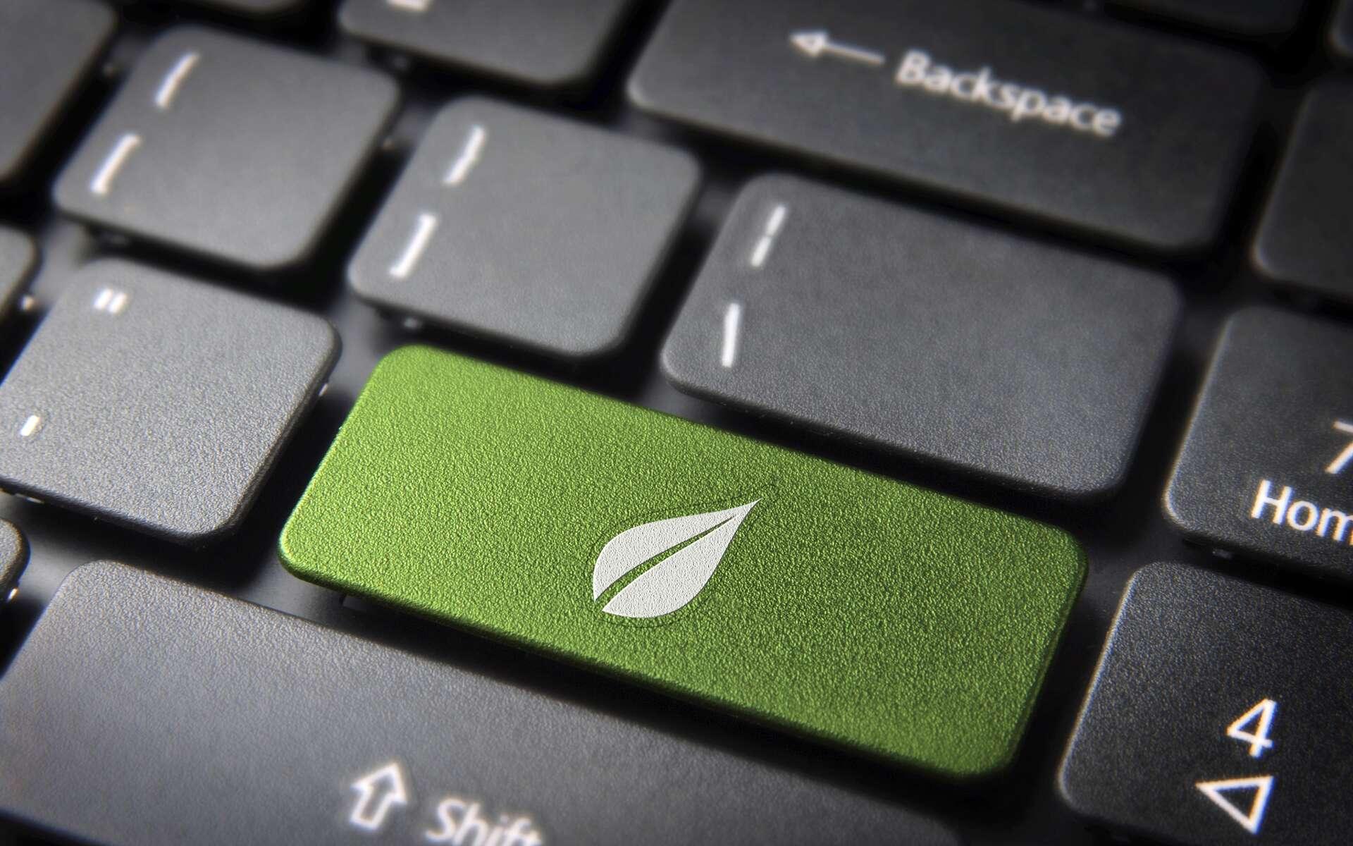 Le consultant green IT a un rôle prépondérant dans la transition écoresponsable d'une entreprise. © cienpies, Adobe Stock
