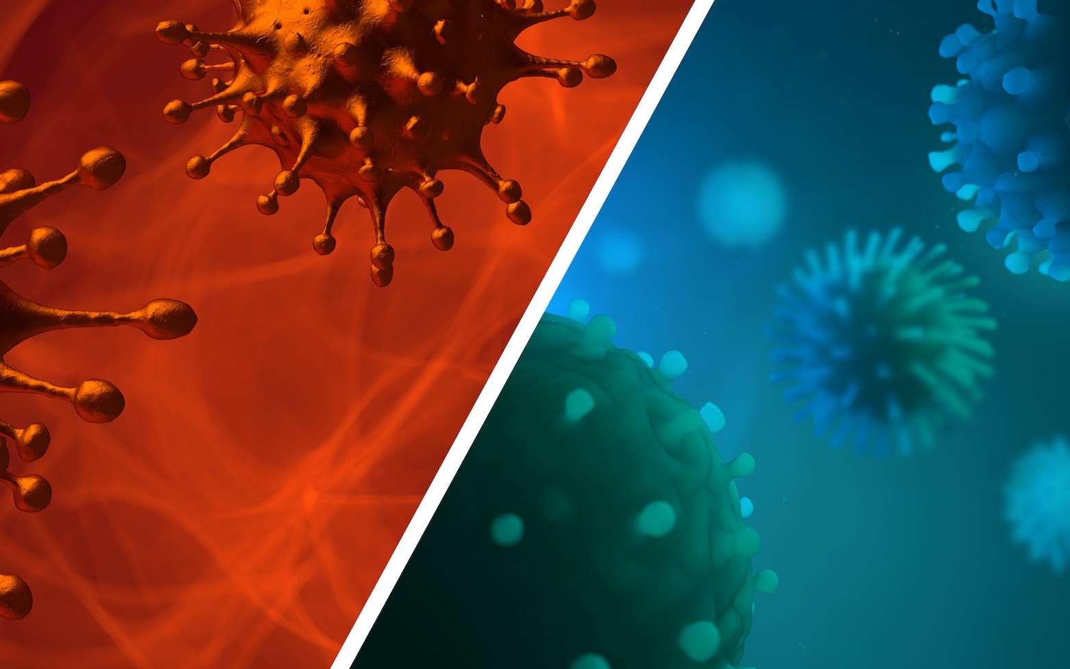 Comparaison entre la grippe et la coronavirus. © CROCOTHERY, Adobe Stock